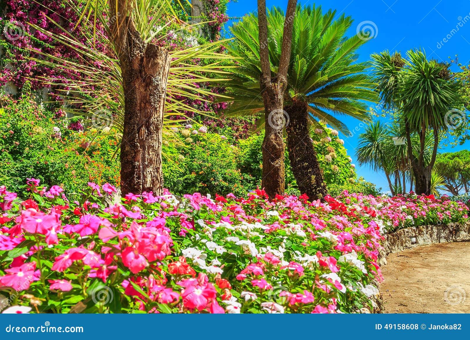 Beaux fleurs plantes et arbres jardin de rufolo ravello for Arbres plantes fleurs