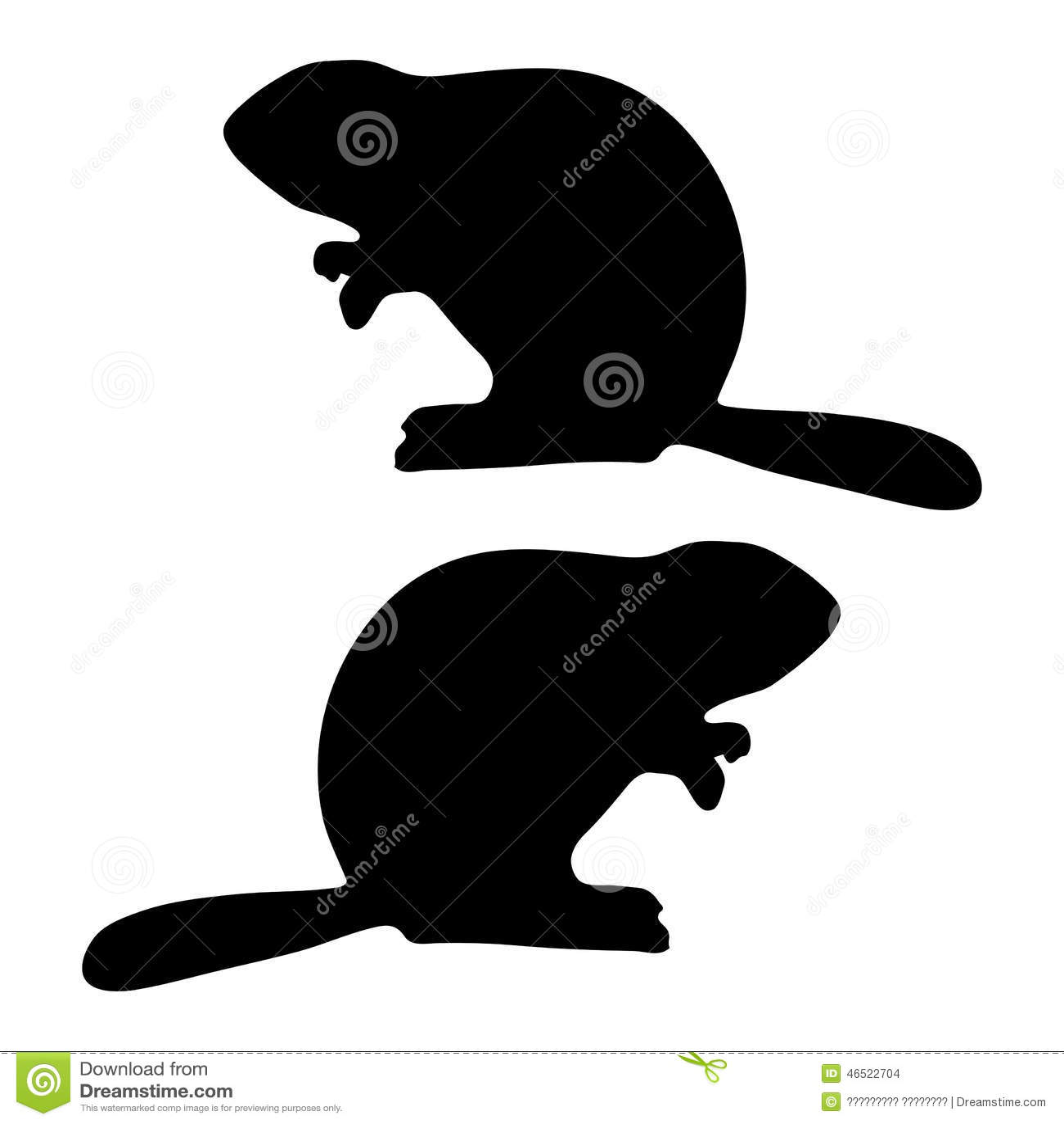 Beaver vector on white background, template for design.