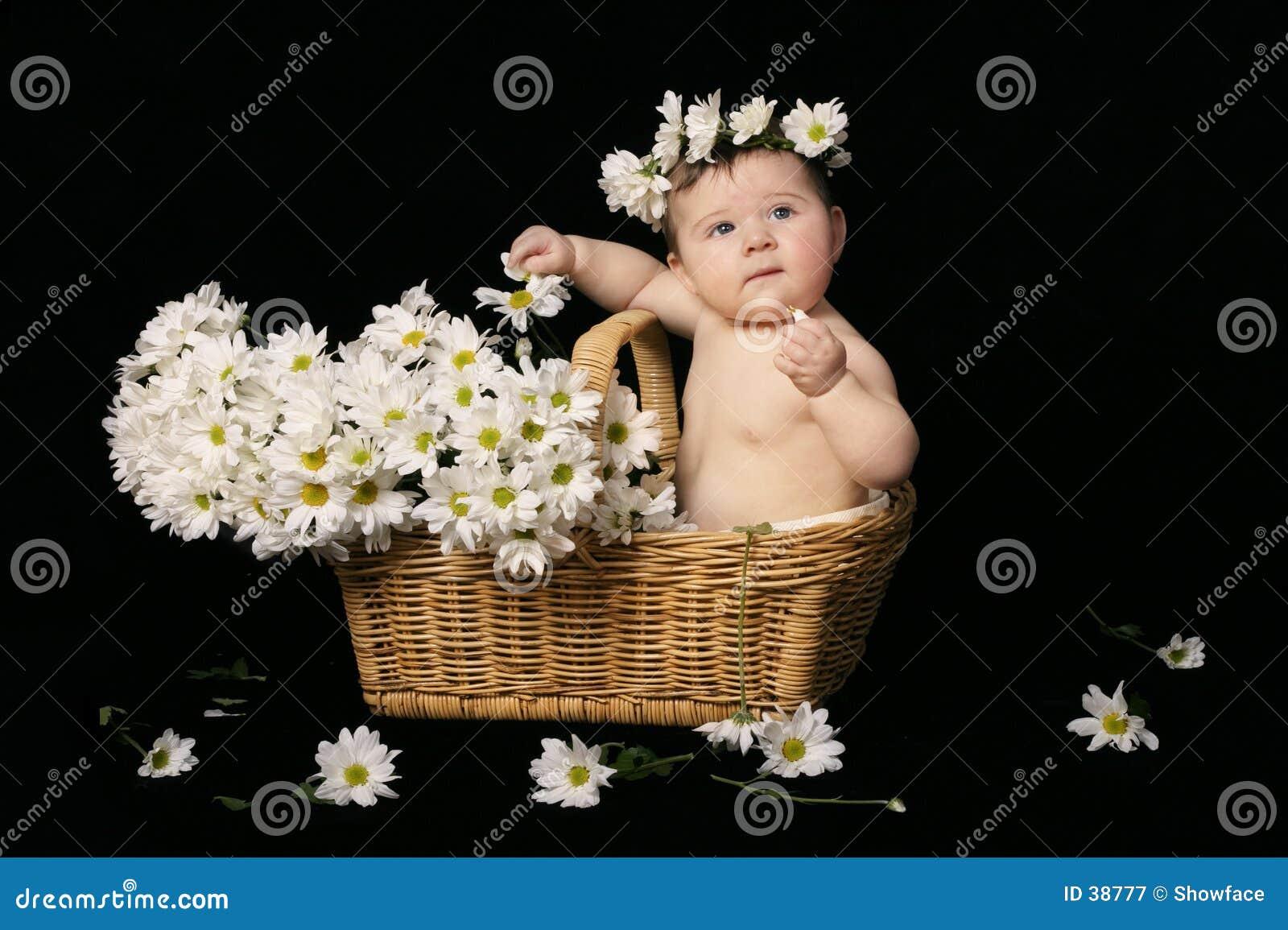 Bebé en margaritas