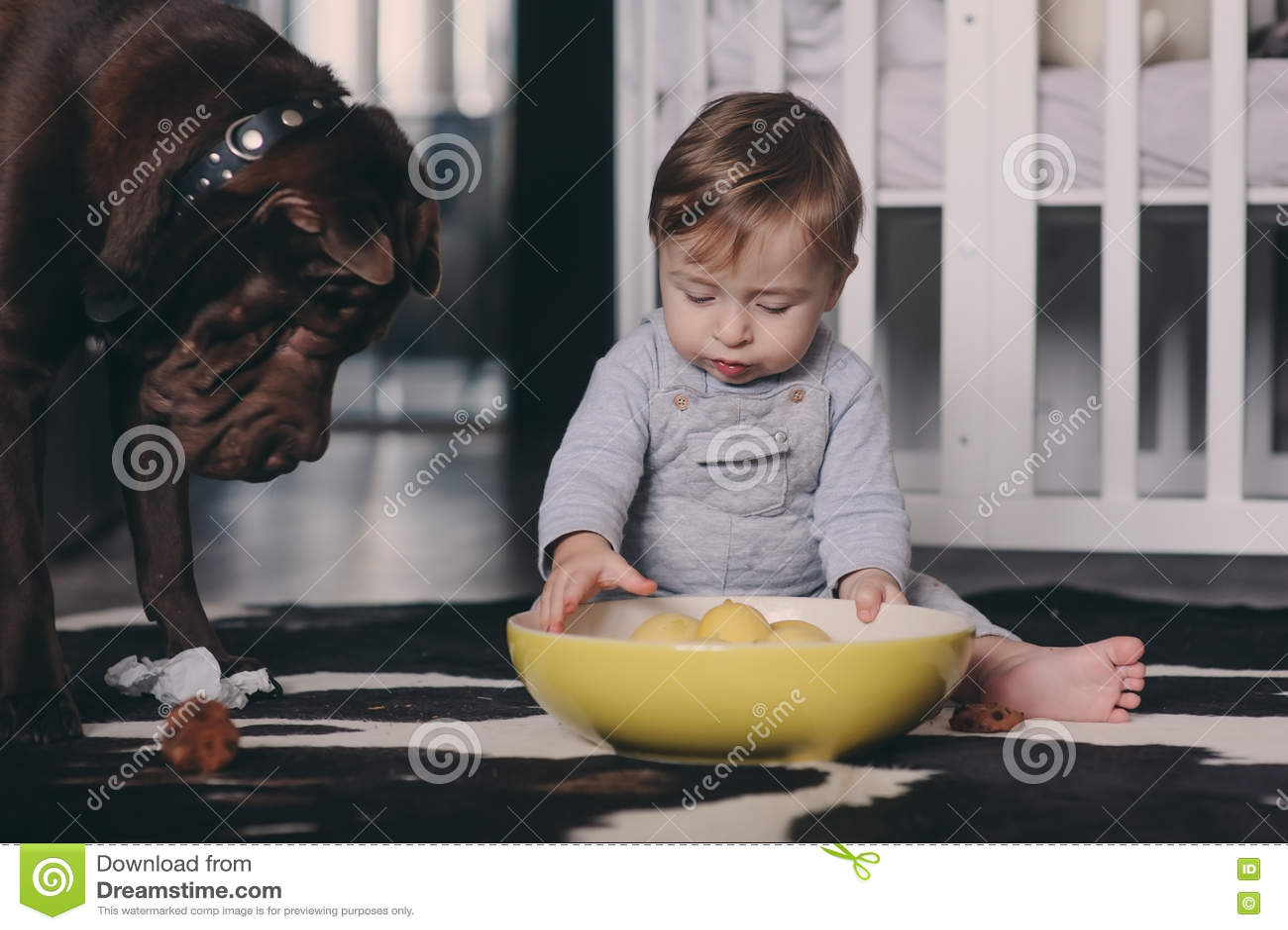 Bebé lindo que come las galletas y que juega en casa Interior sincero del captute en la vida real