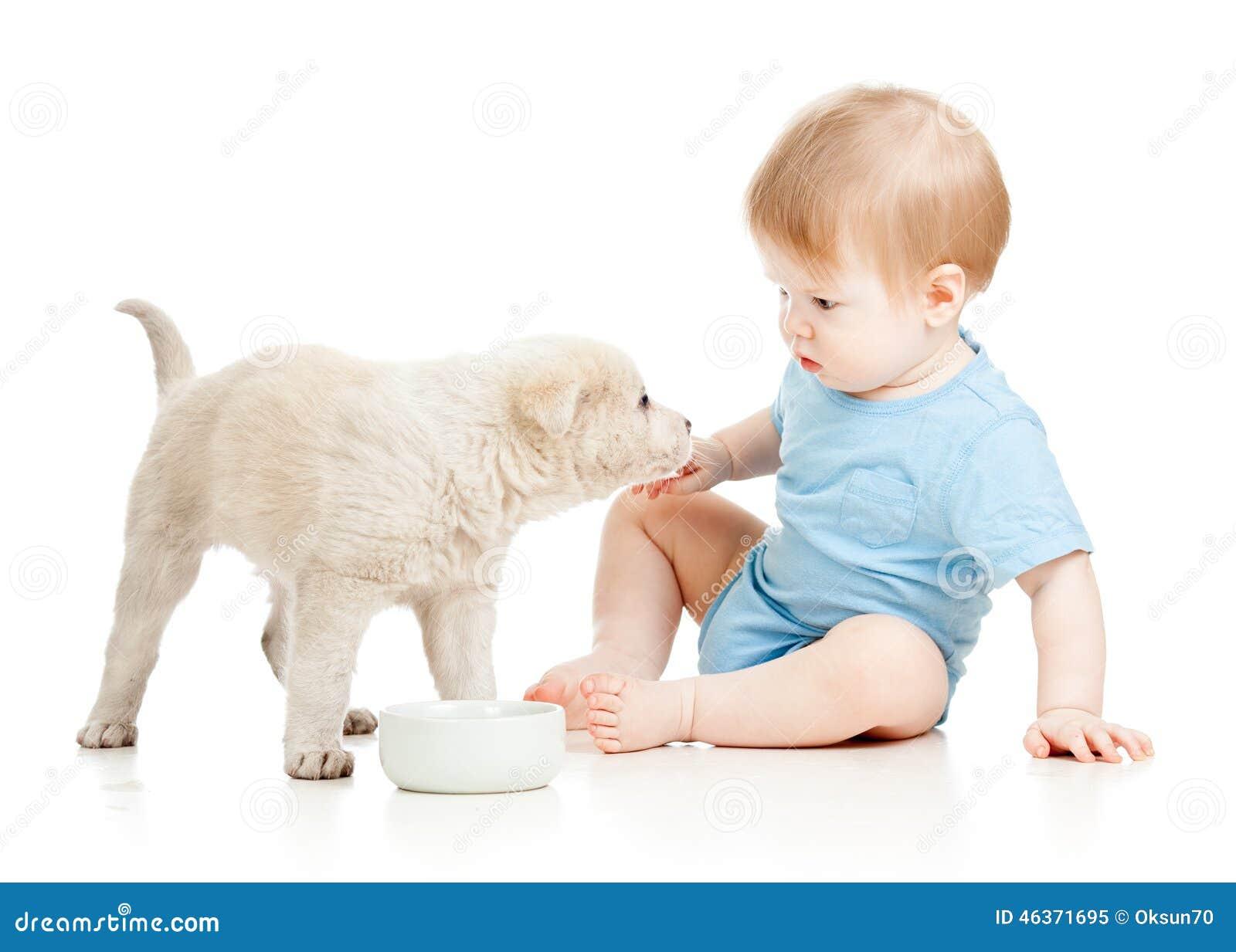 Bebé lindo que mira el perrito