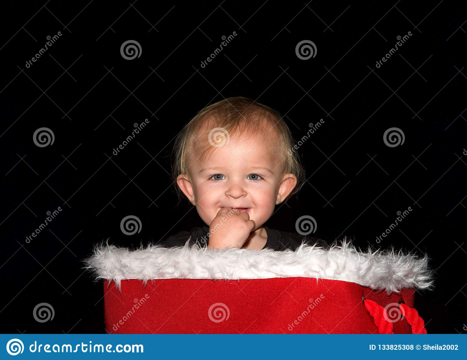 Bebé que sonríe con los fingeres en la boca que se sienta en la cesta de la Navidad que mira el espectador