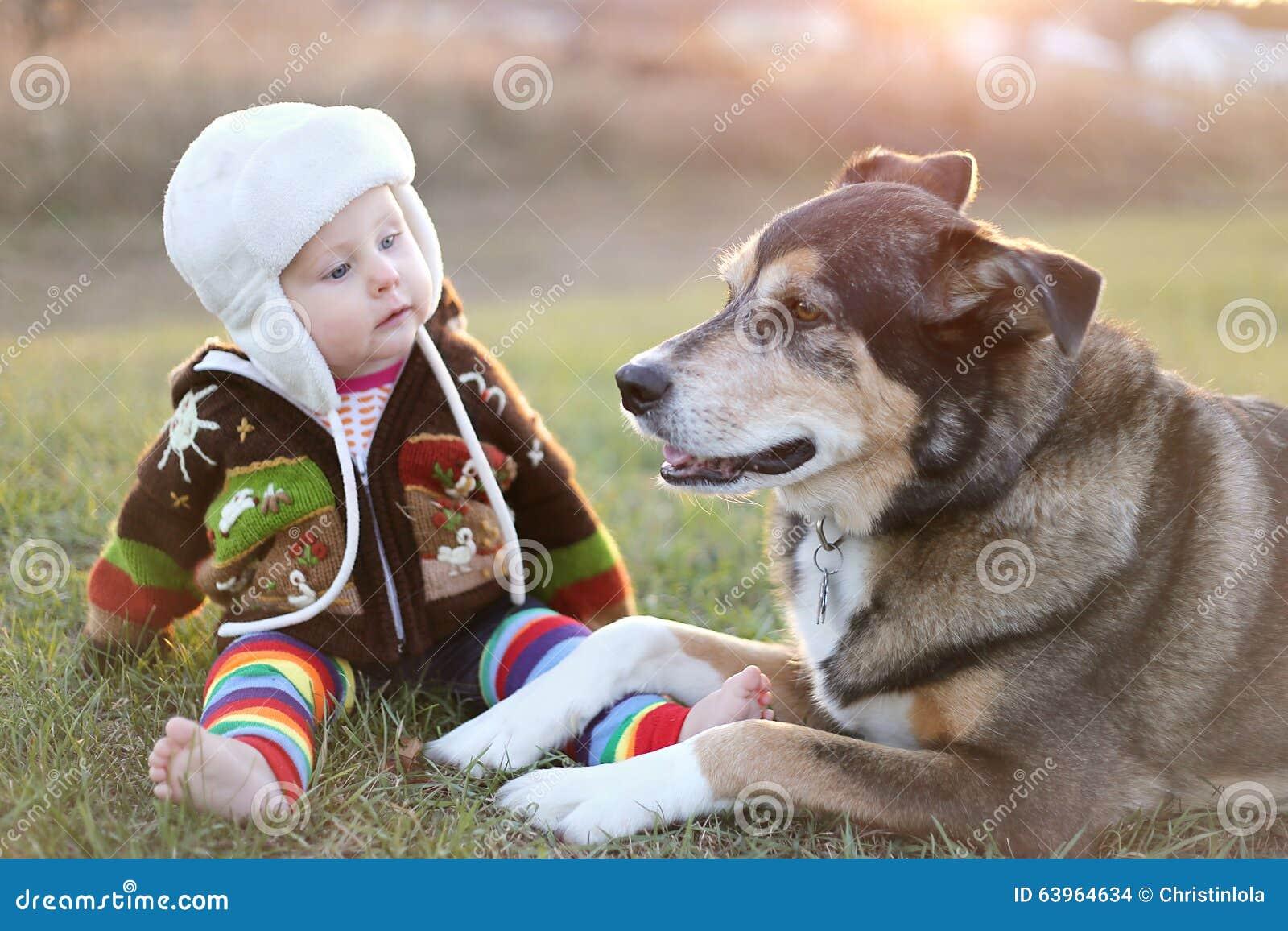Bebê adorável empacotado acima da parte externa com cão de estimação
