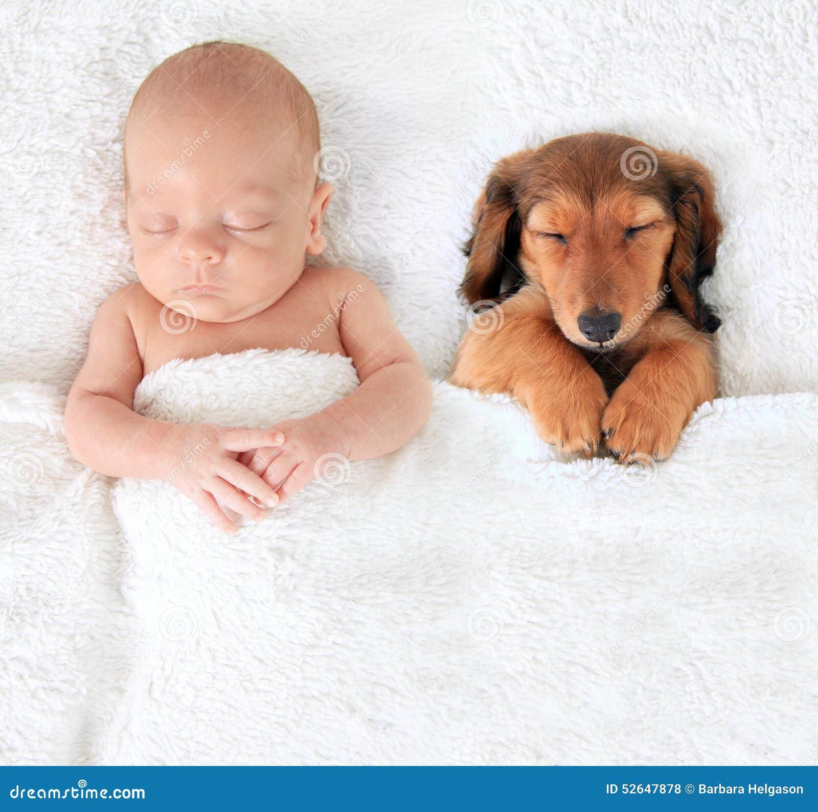 Bebê e cachorrinho recém-nascidos