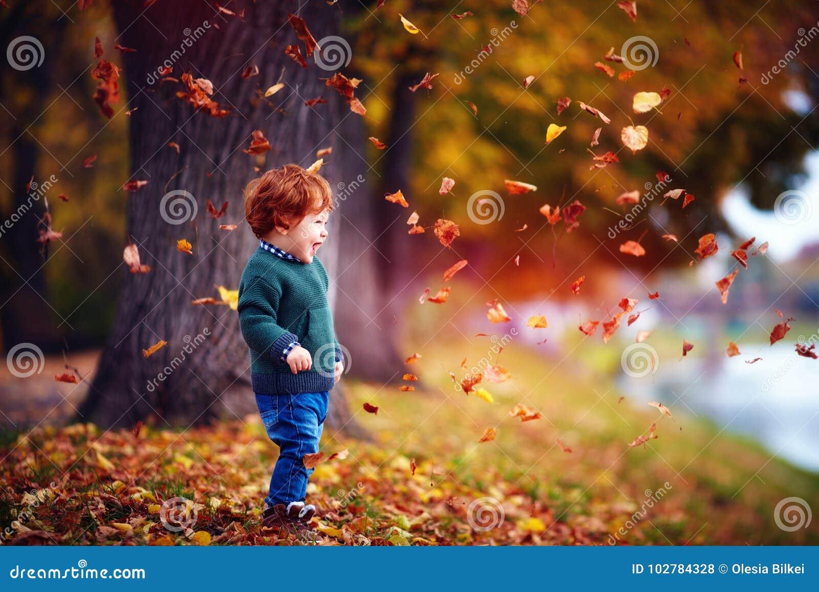 Bebê feliz da criança do ruivo que tem o divertimento, jogando com as folhas caídas no parque do outono