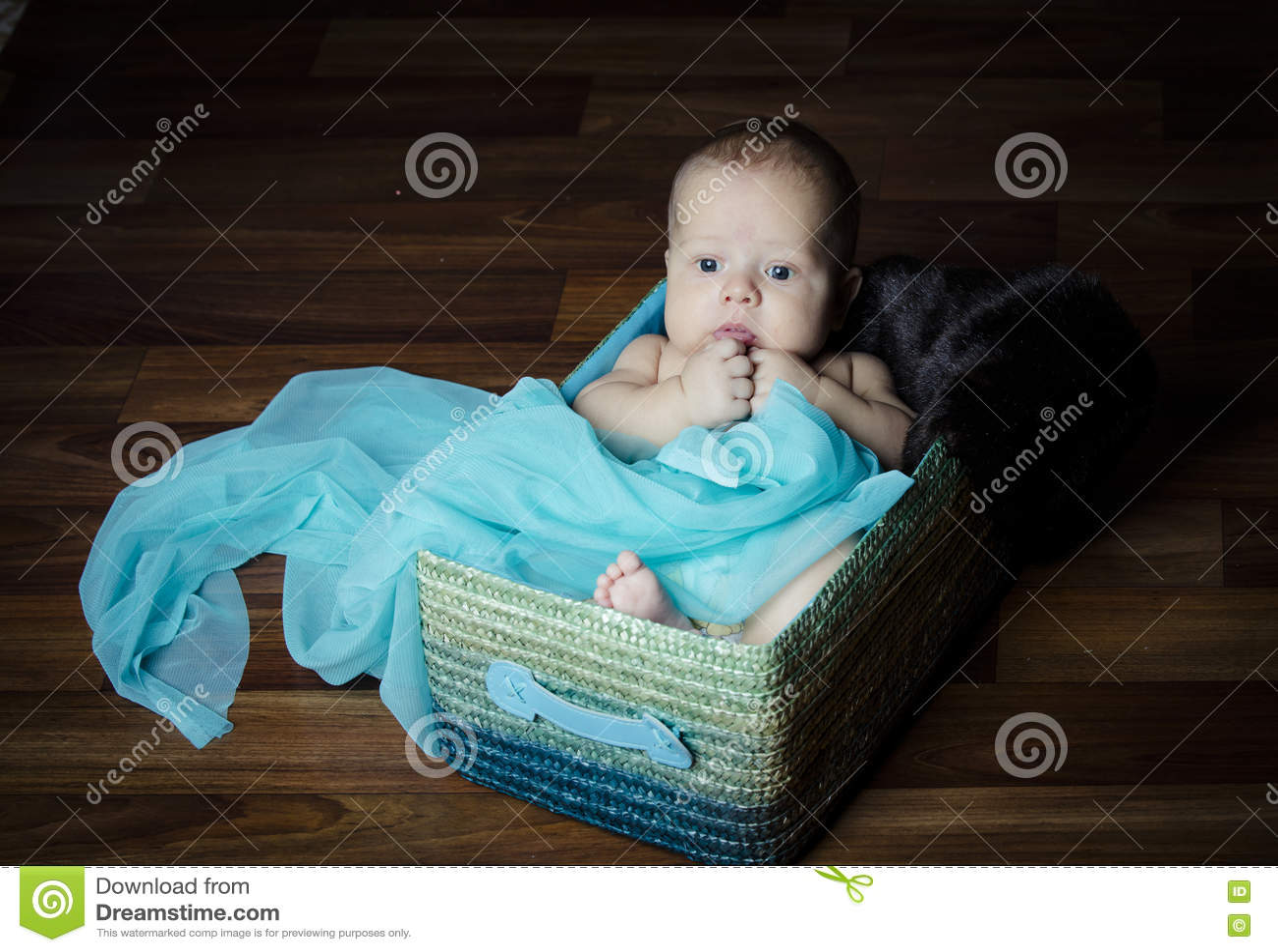 Bebê recém-nascido dentro da cesta da tela