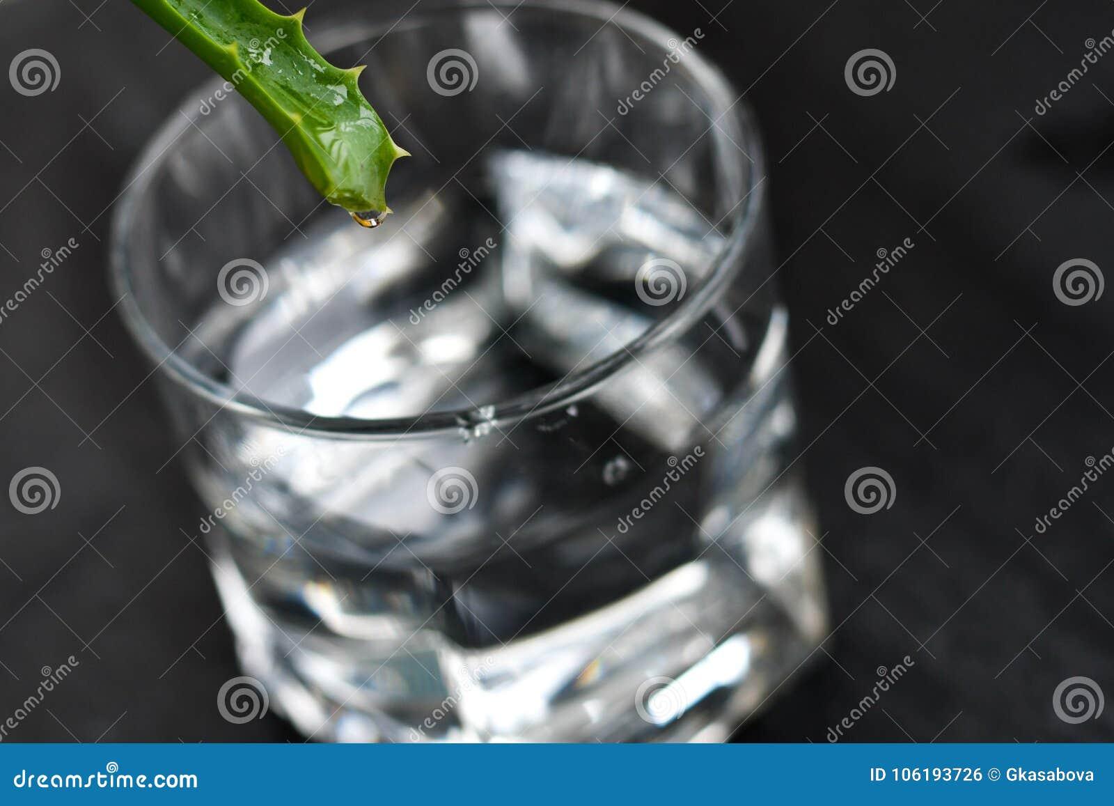 Bebida de vera do aloés