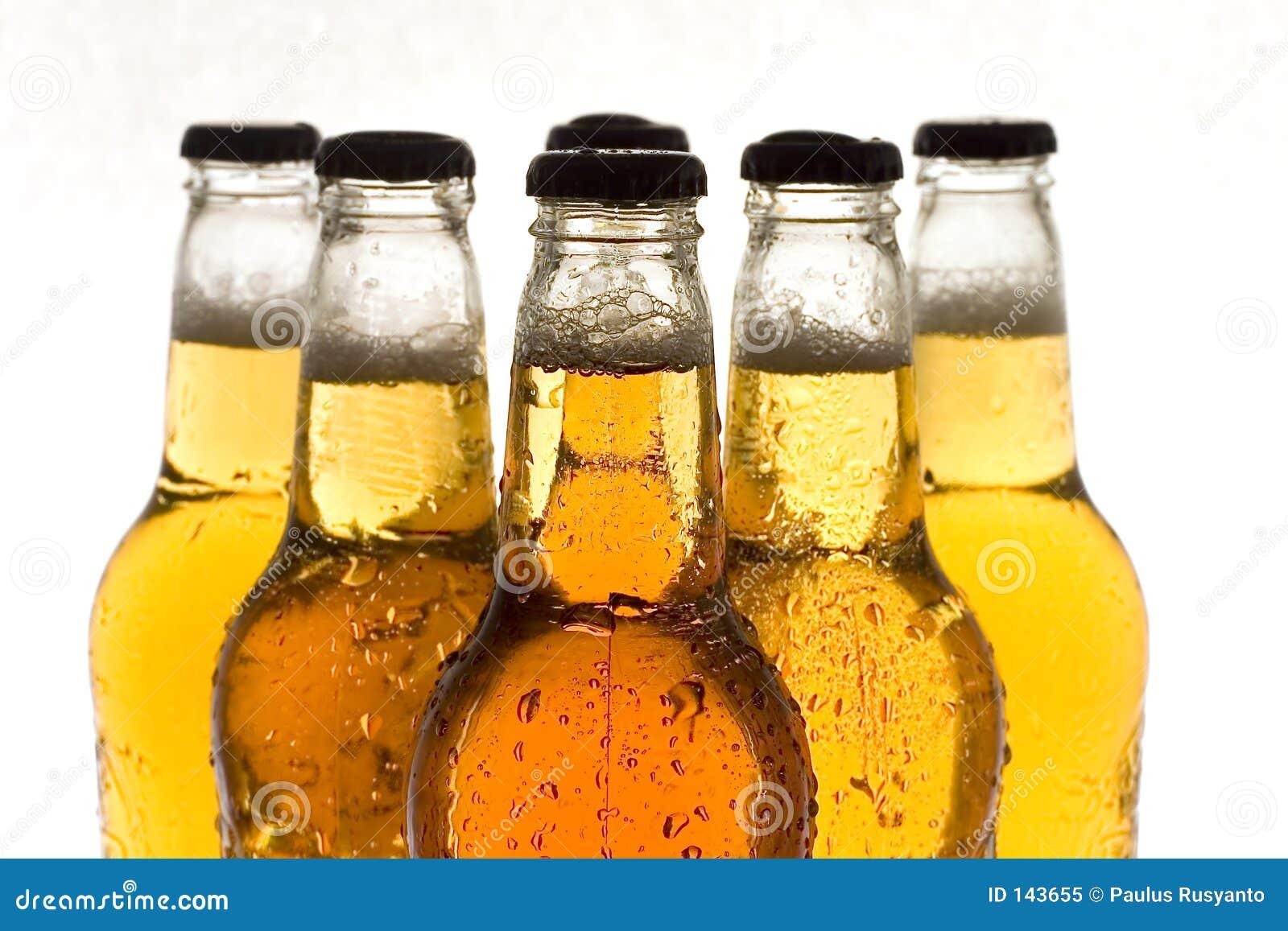 Bebidas: Cerveza