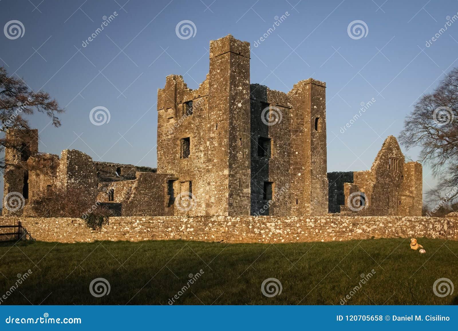 Bective abbey klippning ståndsmässiga Meath ireland