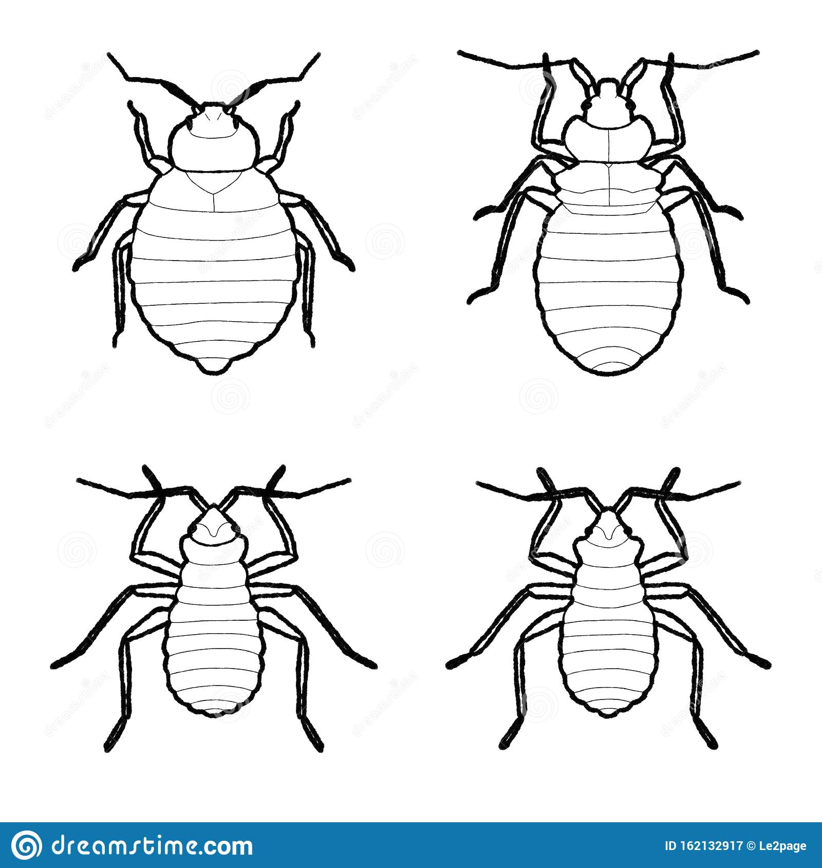 Bed Bug Cartoon Stock Illustrations 284 Bed Bug Cartoon Stock Illustrations Vectors Clipart Dreamstime