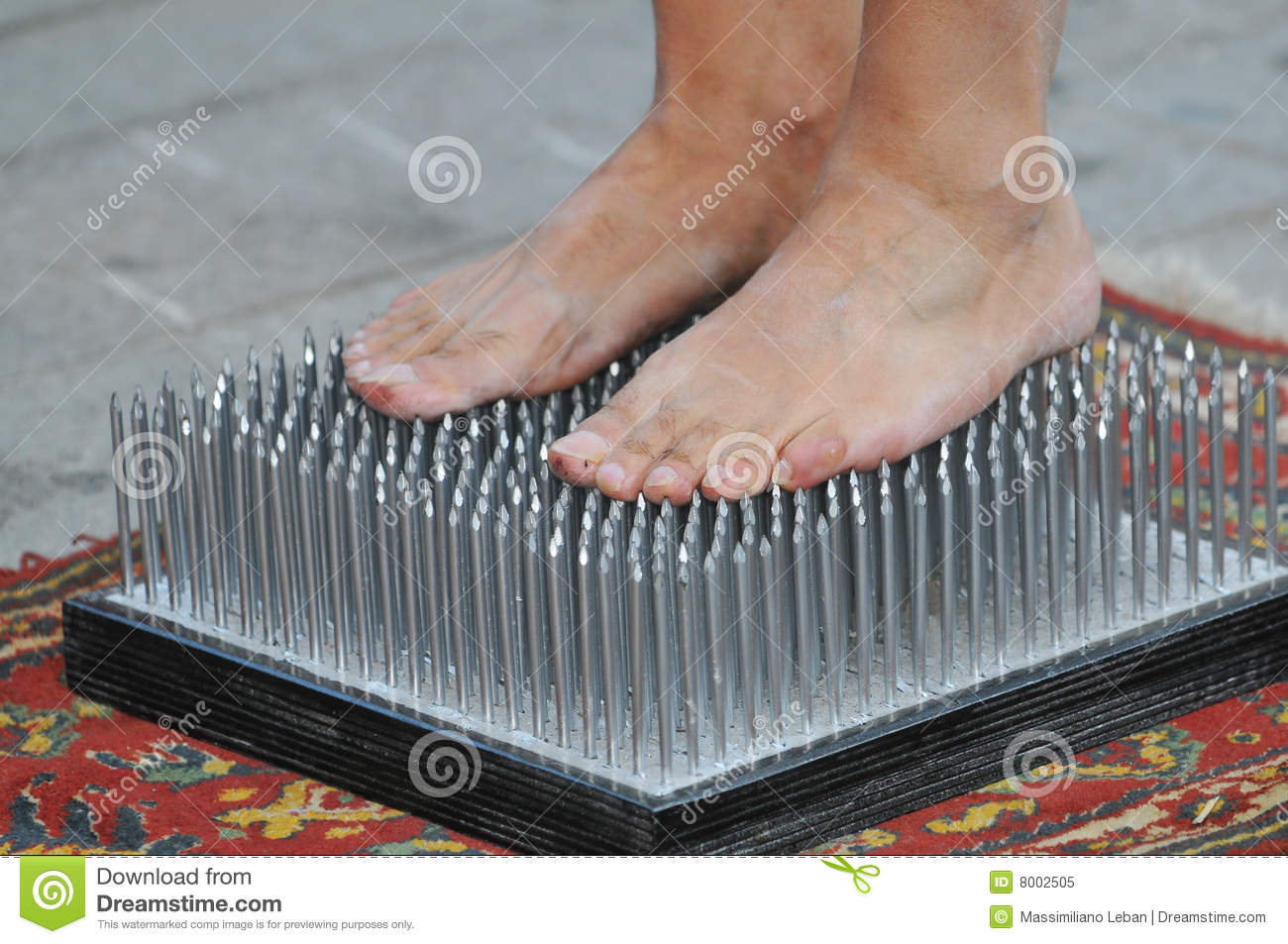 Bed Of Nails Royalty Free Stock Photo - Image: 8002505