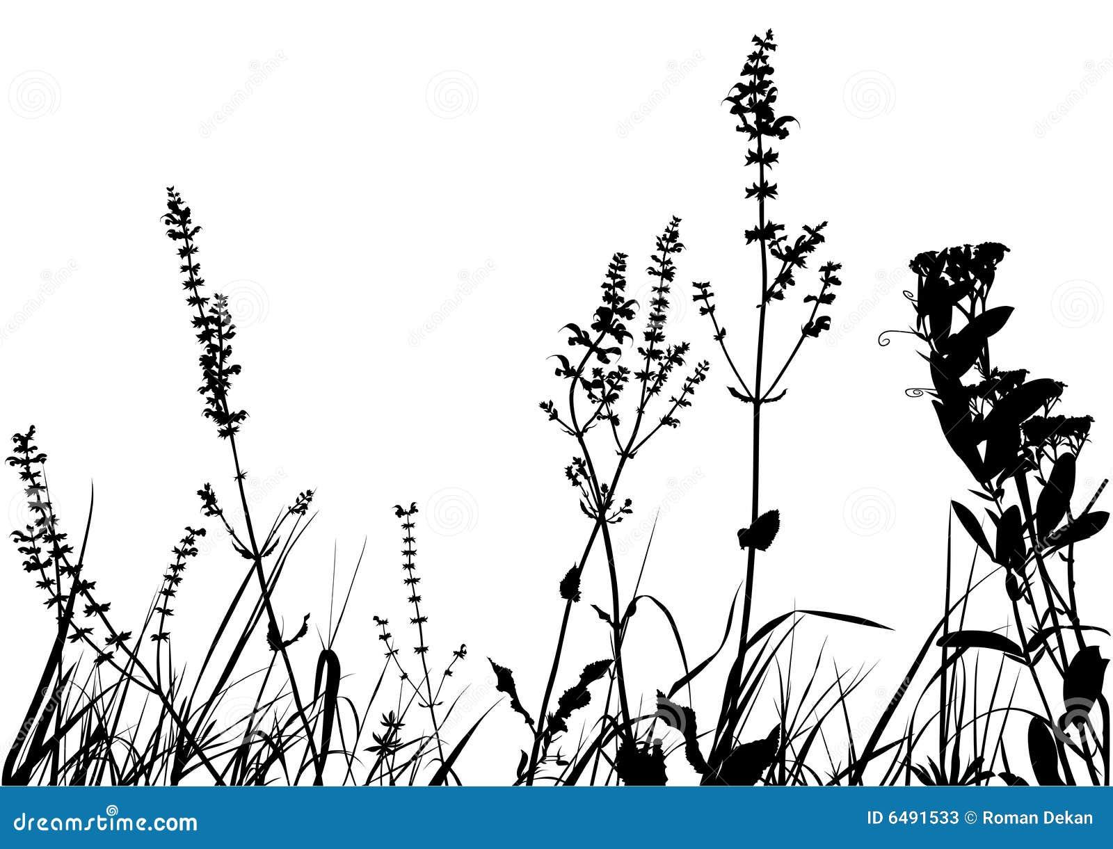 Bedecken Sie Schattenbild mit Gras