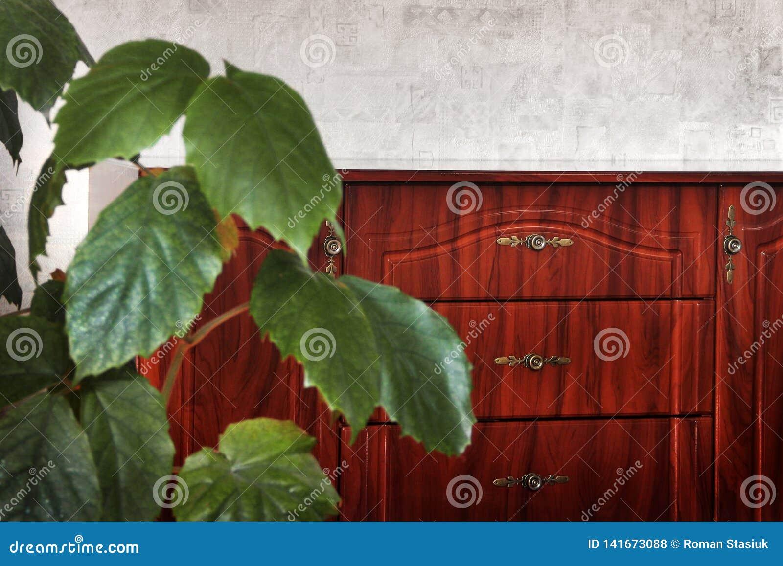 Bedlijst in het huis Installatie in de voorgrond