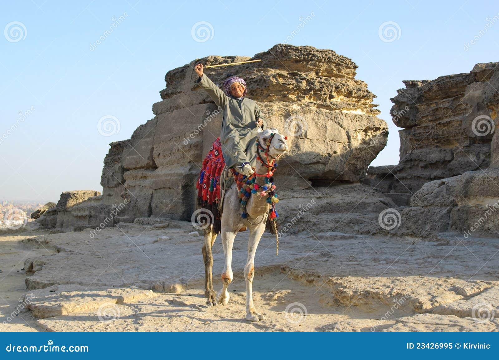 Bedouin arabo sul cammello vicino alle pietre del deserto