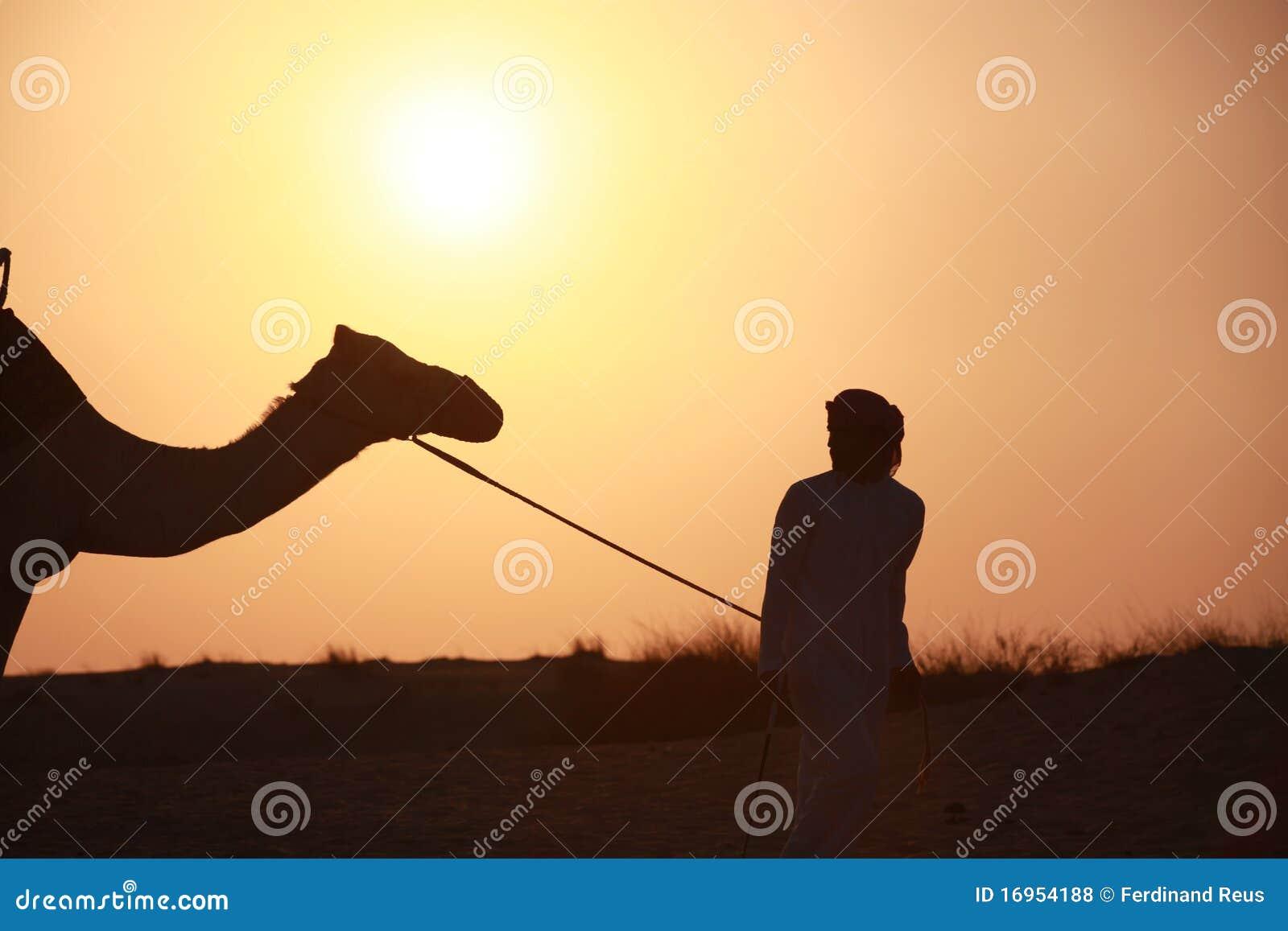 Bedouin con il cammello