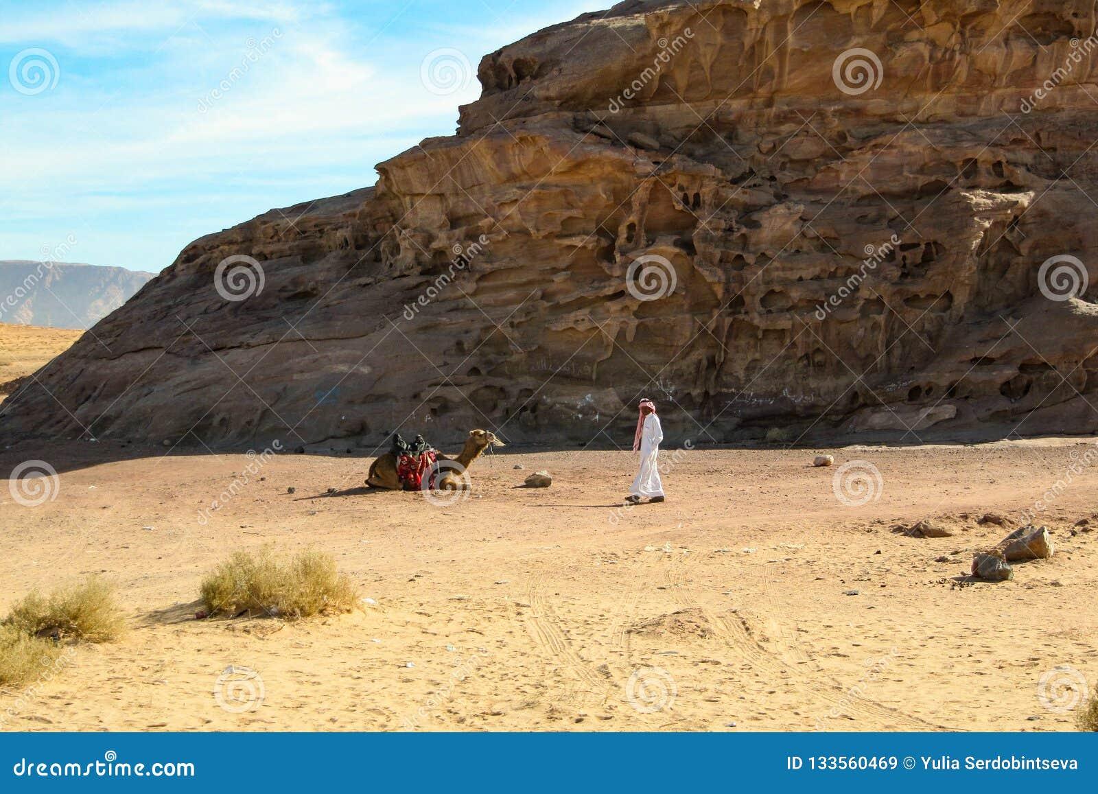 Bedouin in de woestijn bevindt zich met zijn kameel onder het woestijnlandschap Jordanië, Petra - 26 December, 2009