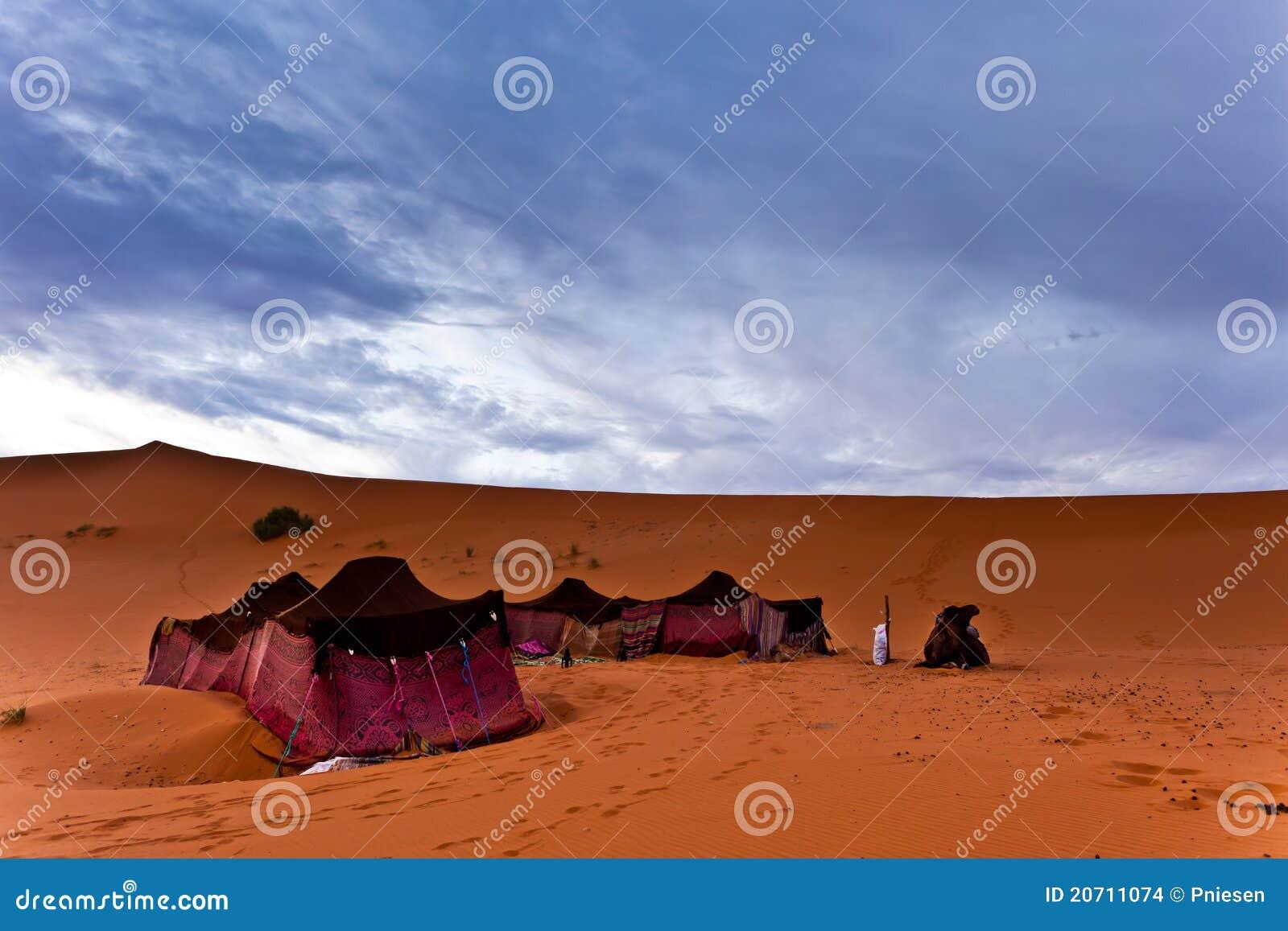bedouin tents in the sahara desert stock images image