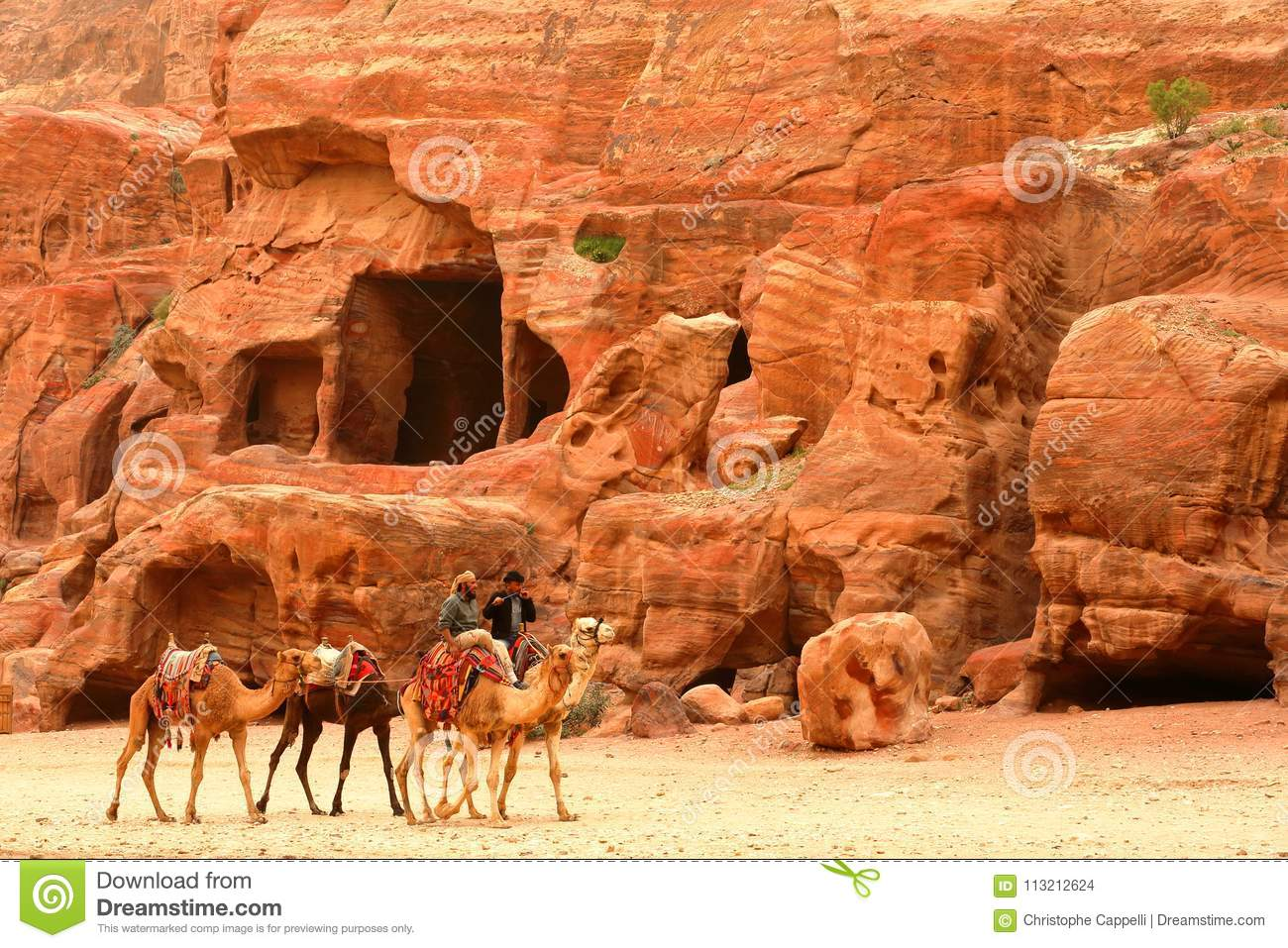 faefbd2fa3c PETRA, JORDAN - MARCH 13, 2016: Bedouins riding their camels with colorful  sandstones in the background