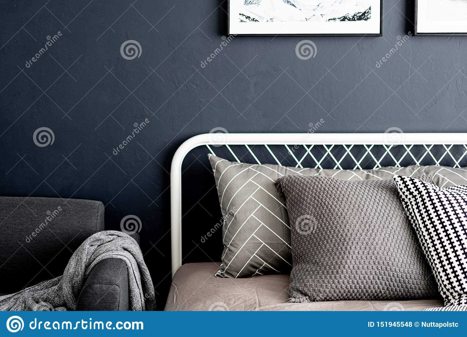 Bedroom corner setting with comfortable graphic pillows in neutral color with navy blue painted wall/ comfortable interior / inter