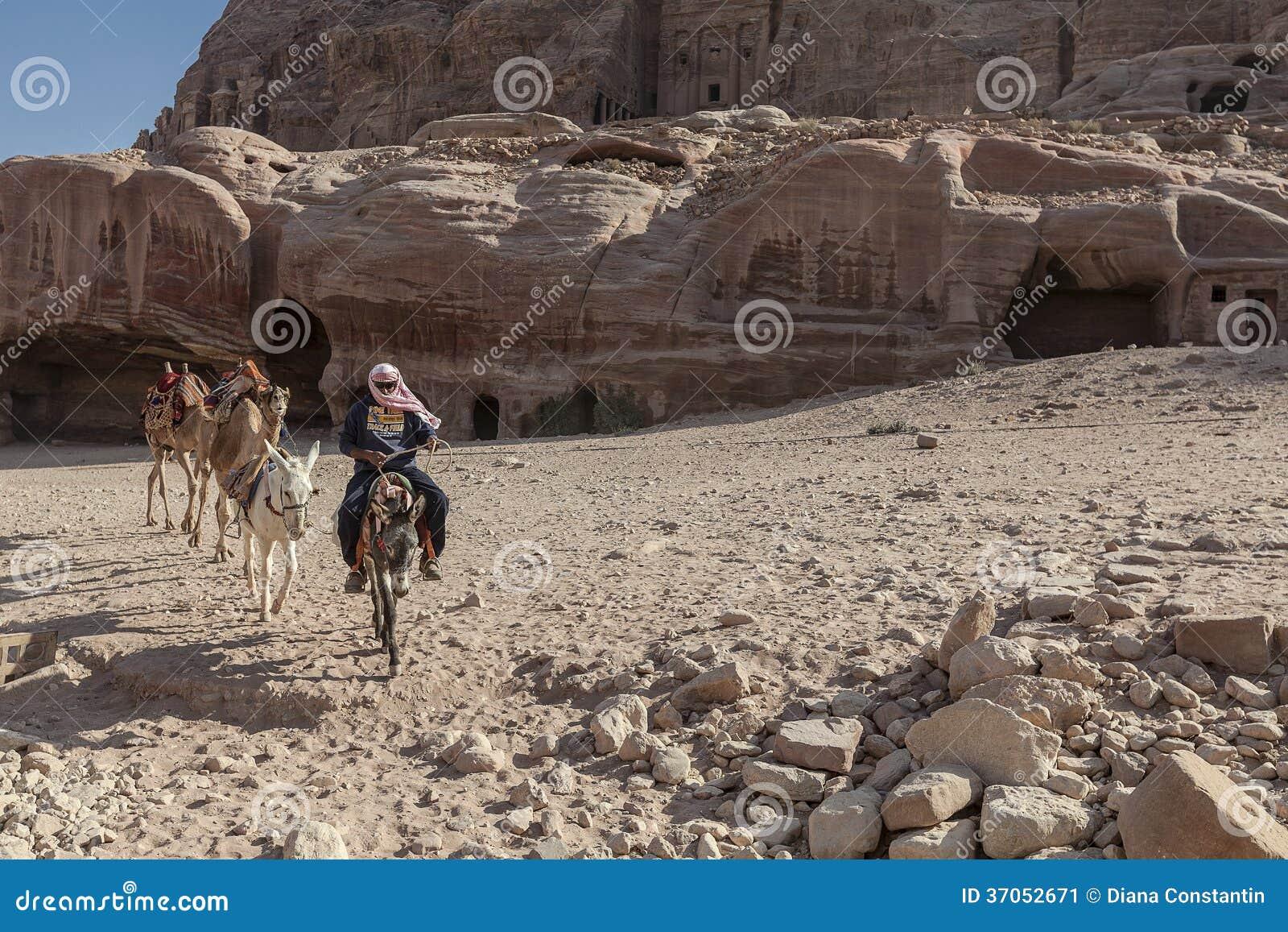 Beduin som rider en åsna