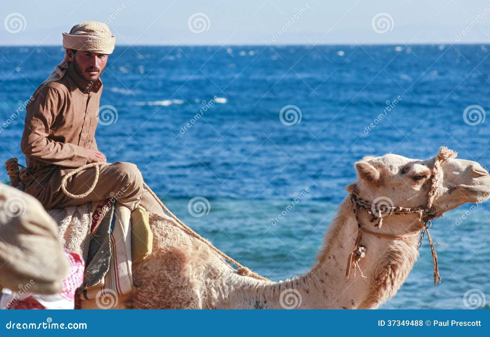 Beduinmannen rider en kamel