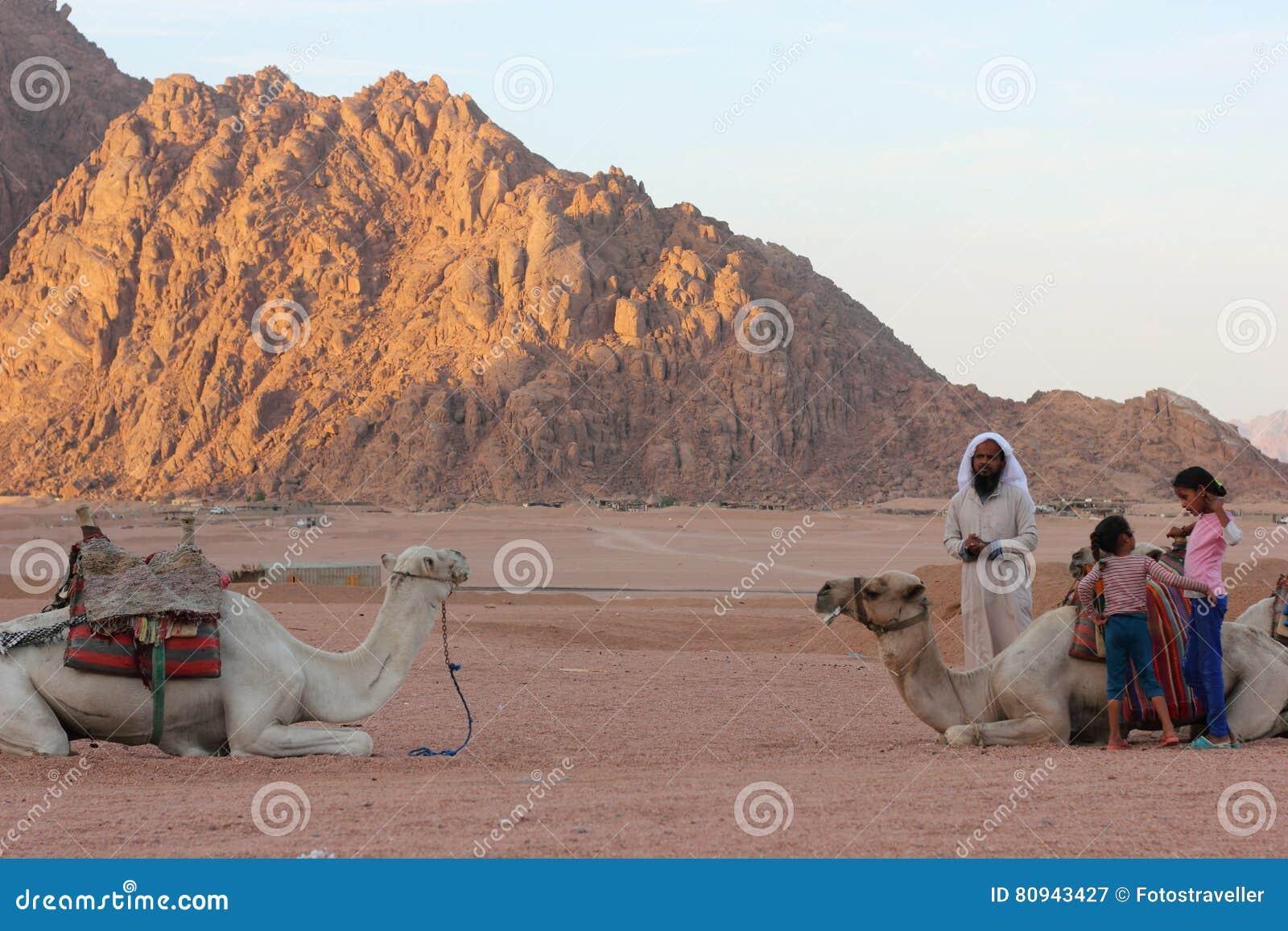 Beduinnomader