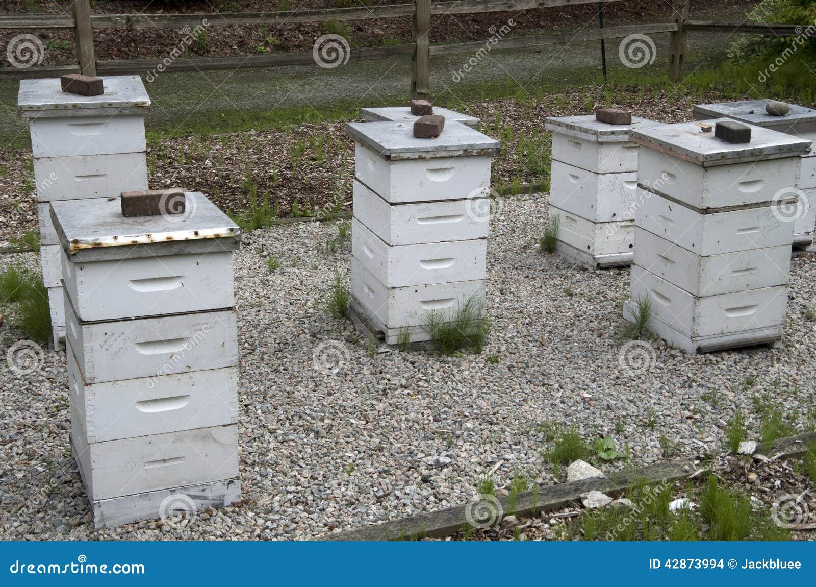Bee Hive Box Farm Stock Photo - Image: 42873994