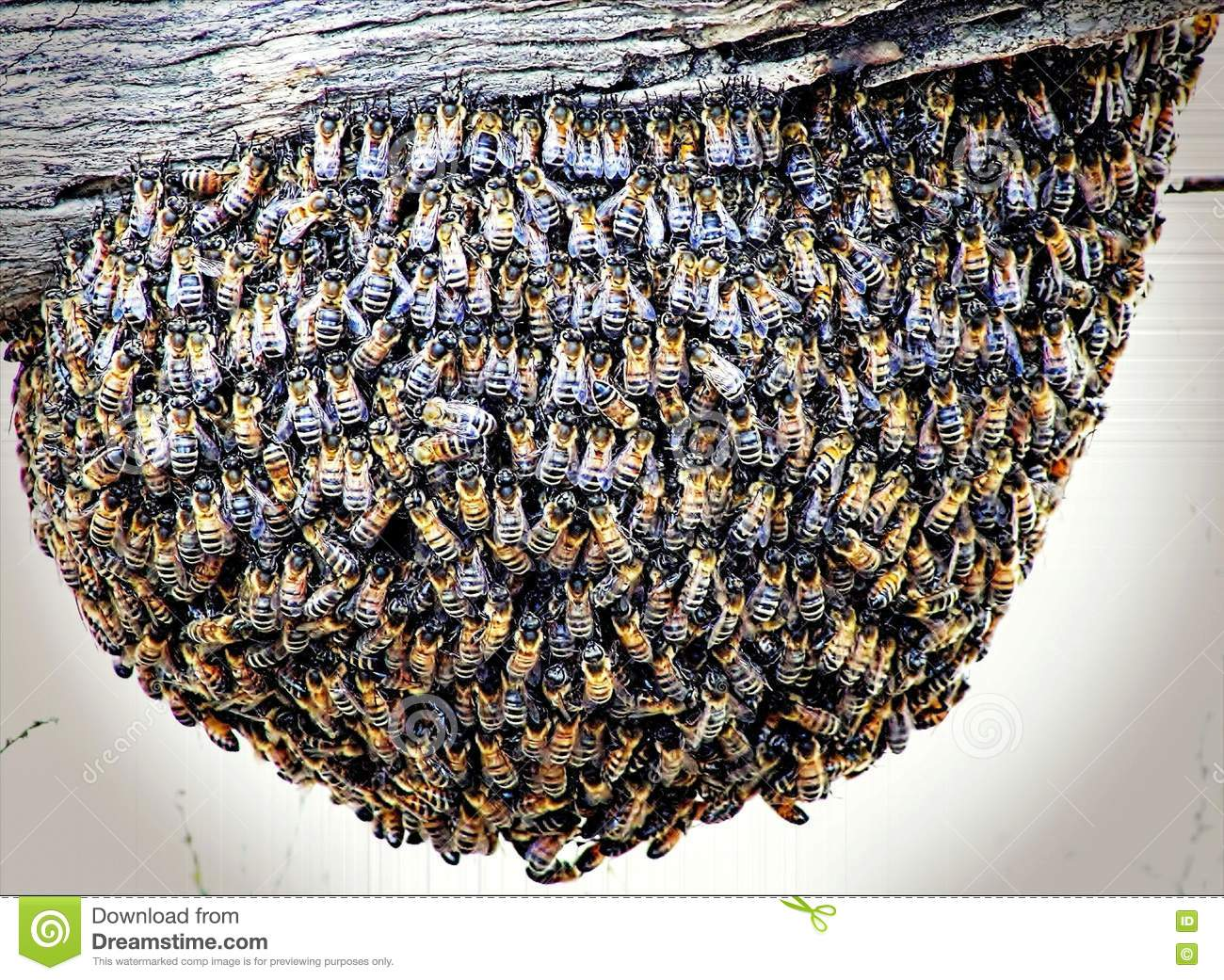 Bee Hive on a Fence Post