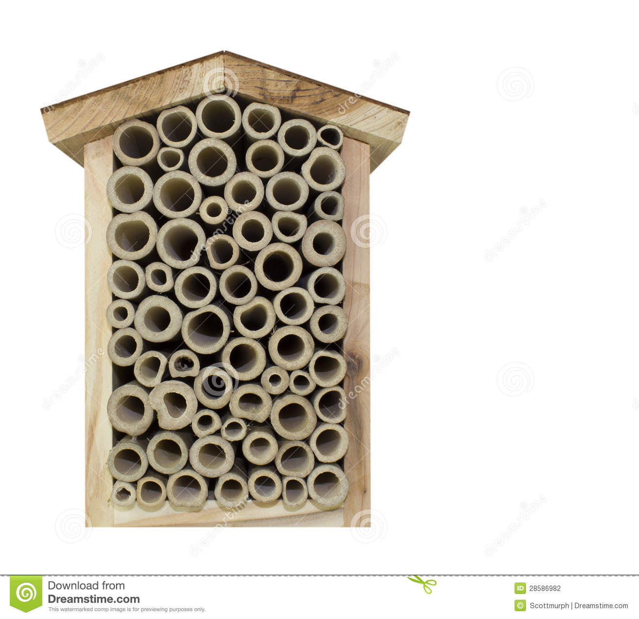 A Bee Home