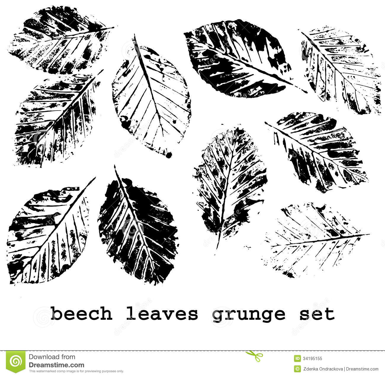 Dbb72bb2a7ec3c0bc125731e00393a9c as well Imagens De Stock Cowgirl Image18114604 moreover Royalty Free Stock Photo Beech Leaf Prints Set Grunge Leaves Silhouette Brushes Isolated Black White Background Image34195155 as well Bioorganic Skull Tattoo 1 209449021 furthermore Always On Top Numerator. on 2 1256 0