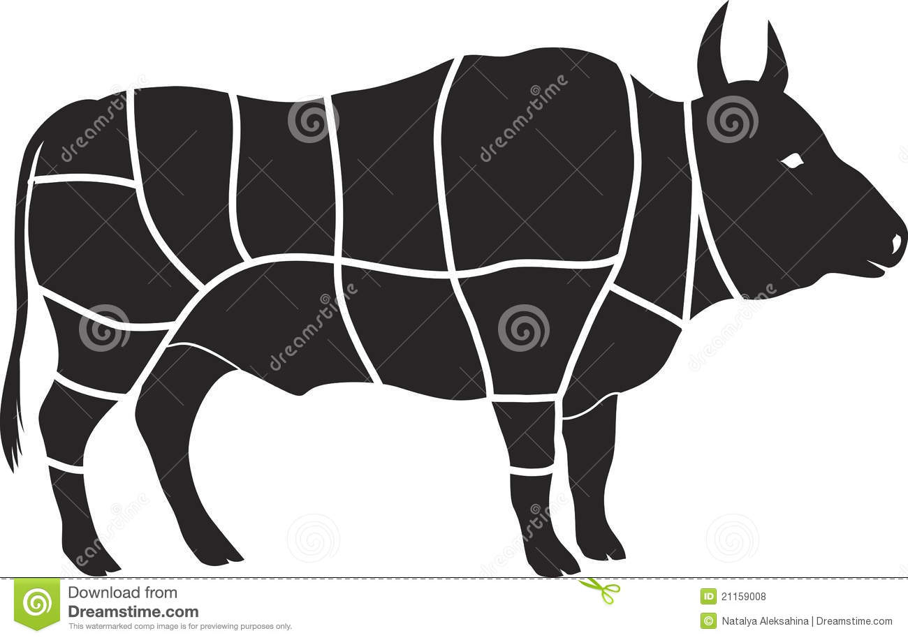 diagram of beef brisket diagram of beef cattle beef chart stock vector illustration of chuck meat