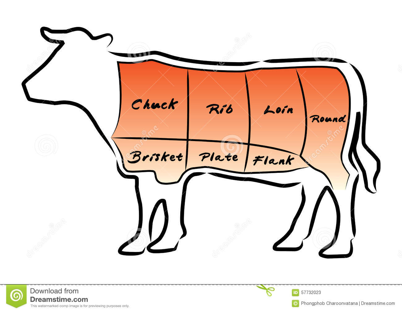 Beef cut chart stock vector illustration of illustration 57732023 beef cut chart pooptronica