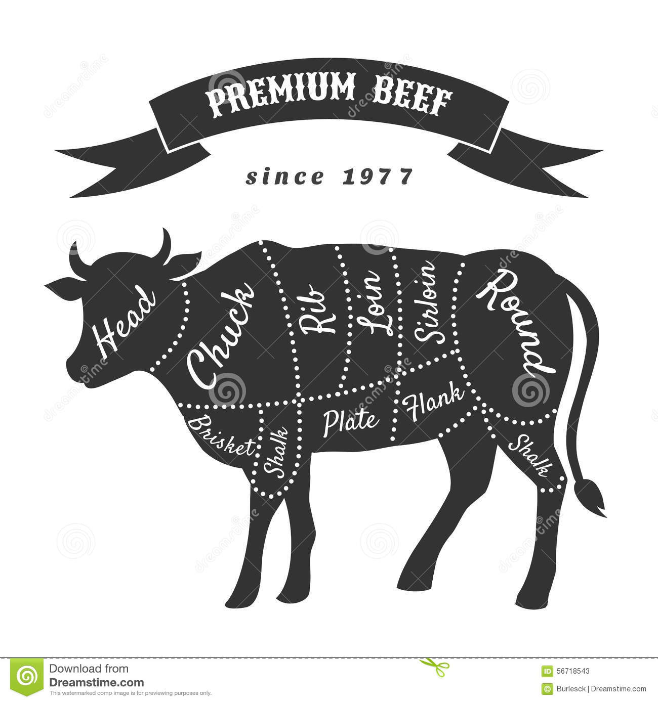 beef cuts for butcher shop poster stock vector illustration of illustration  outline 56718543 Retail Cuts of Pork Pork Parts Chart