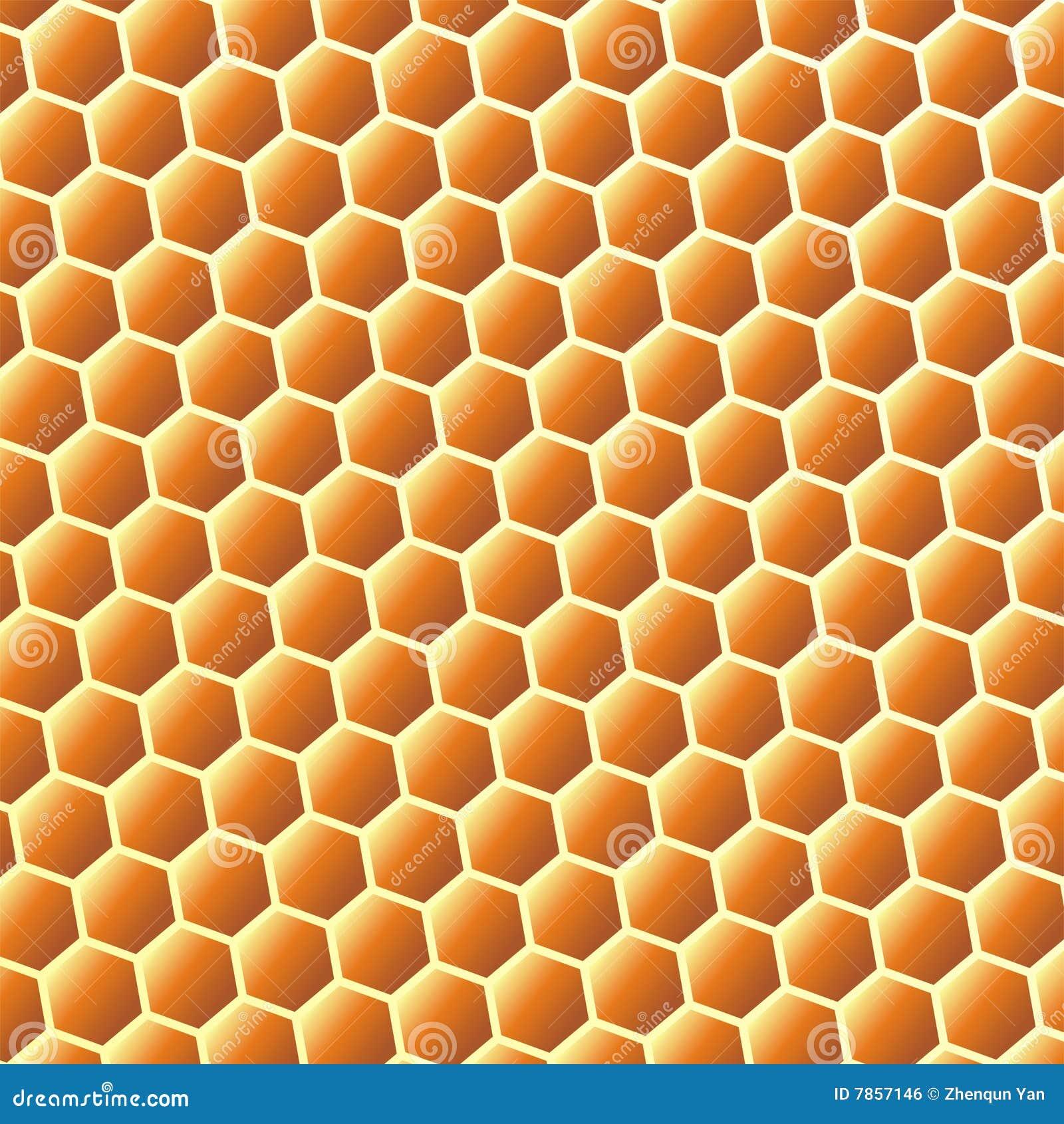 Beehive plans