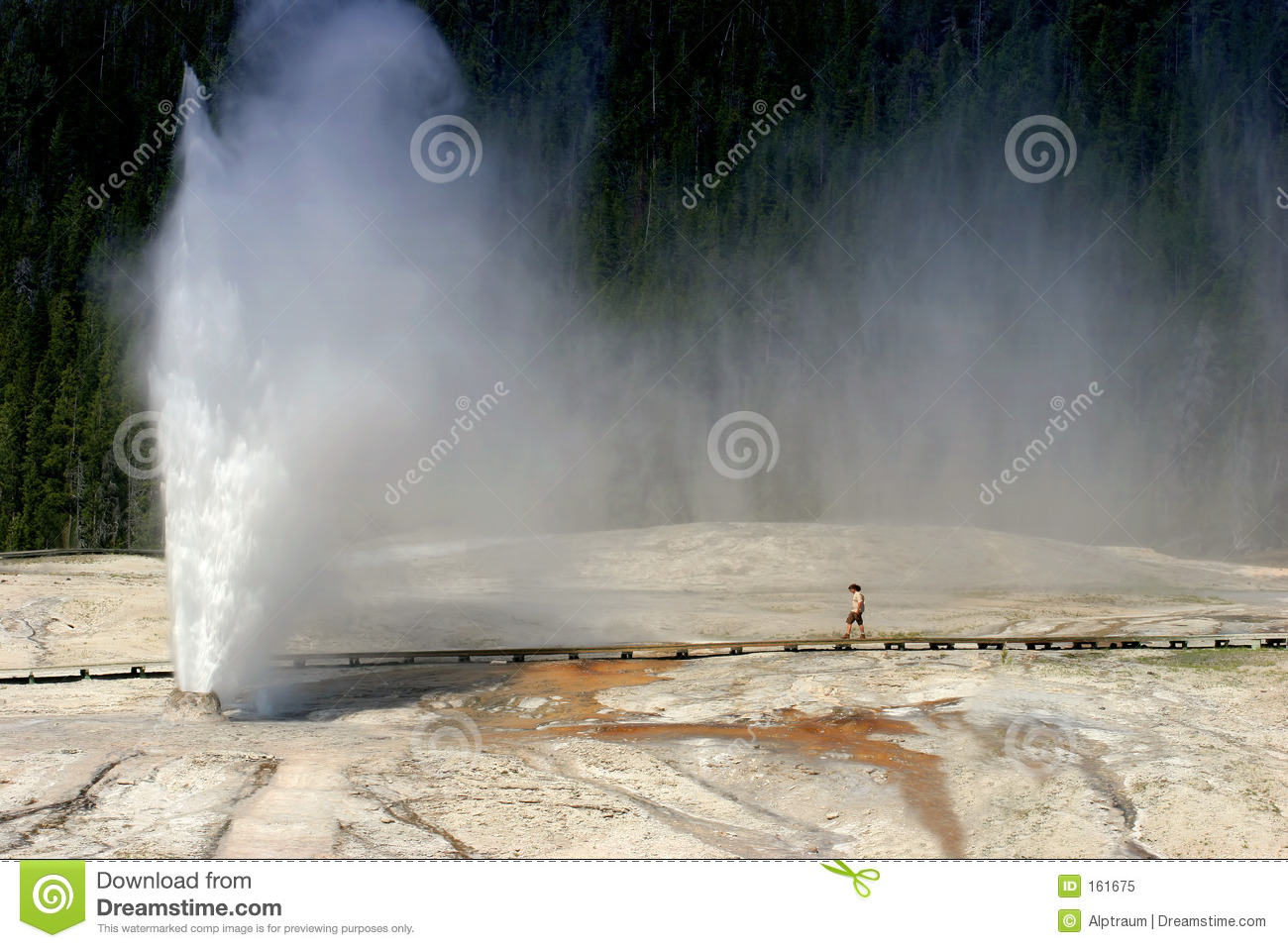 Beehive geyser in Yellowstone national park