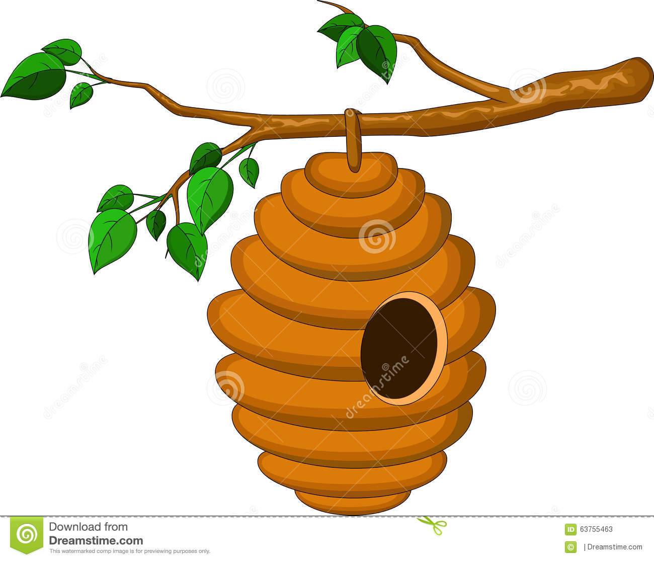 Beehive Hanging From A Branch Isolated Stock Photos