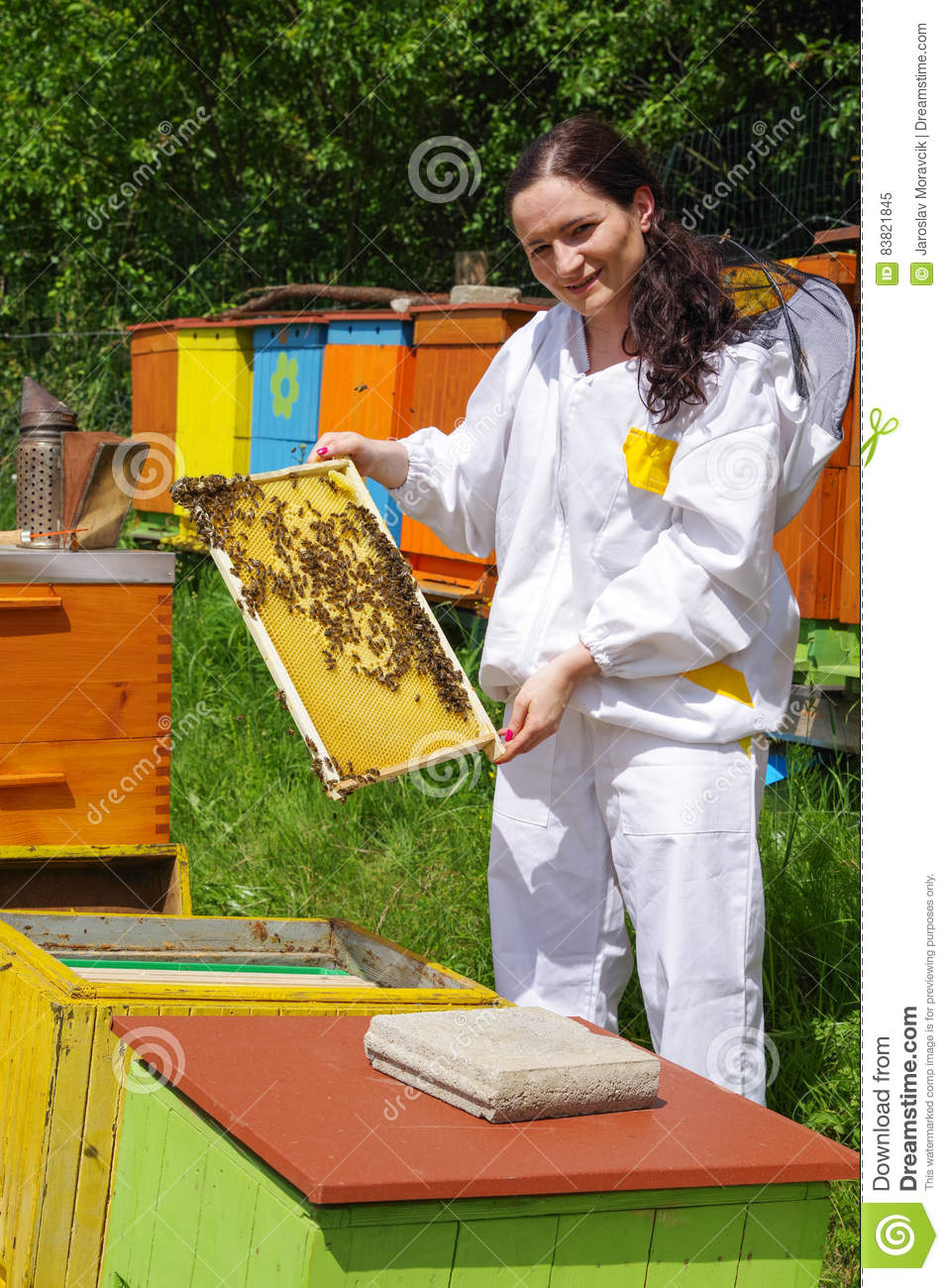 Beekeeper and beehives