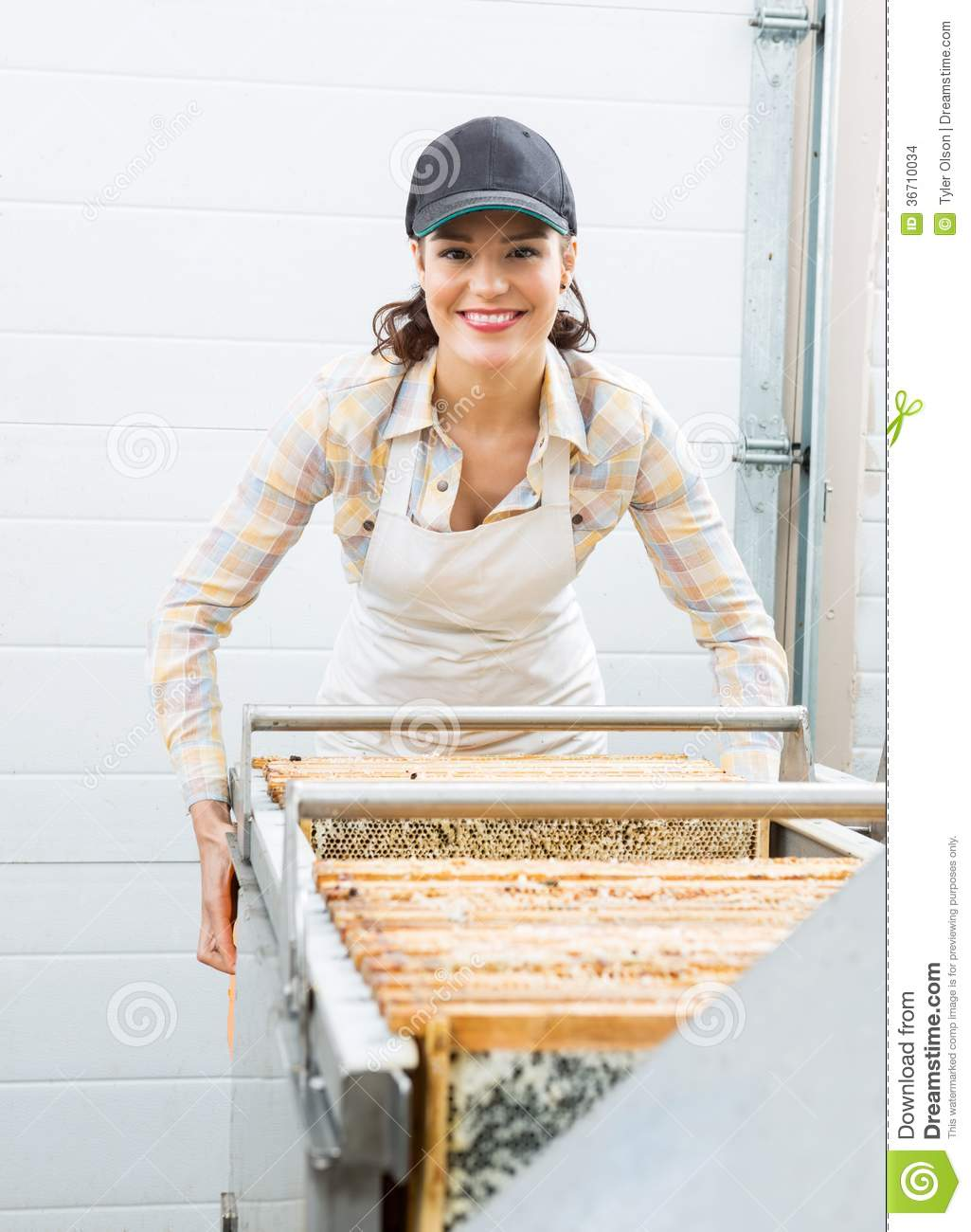 Beekeeping business plan