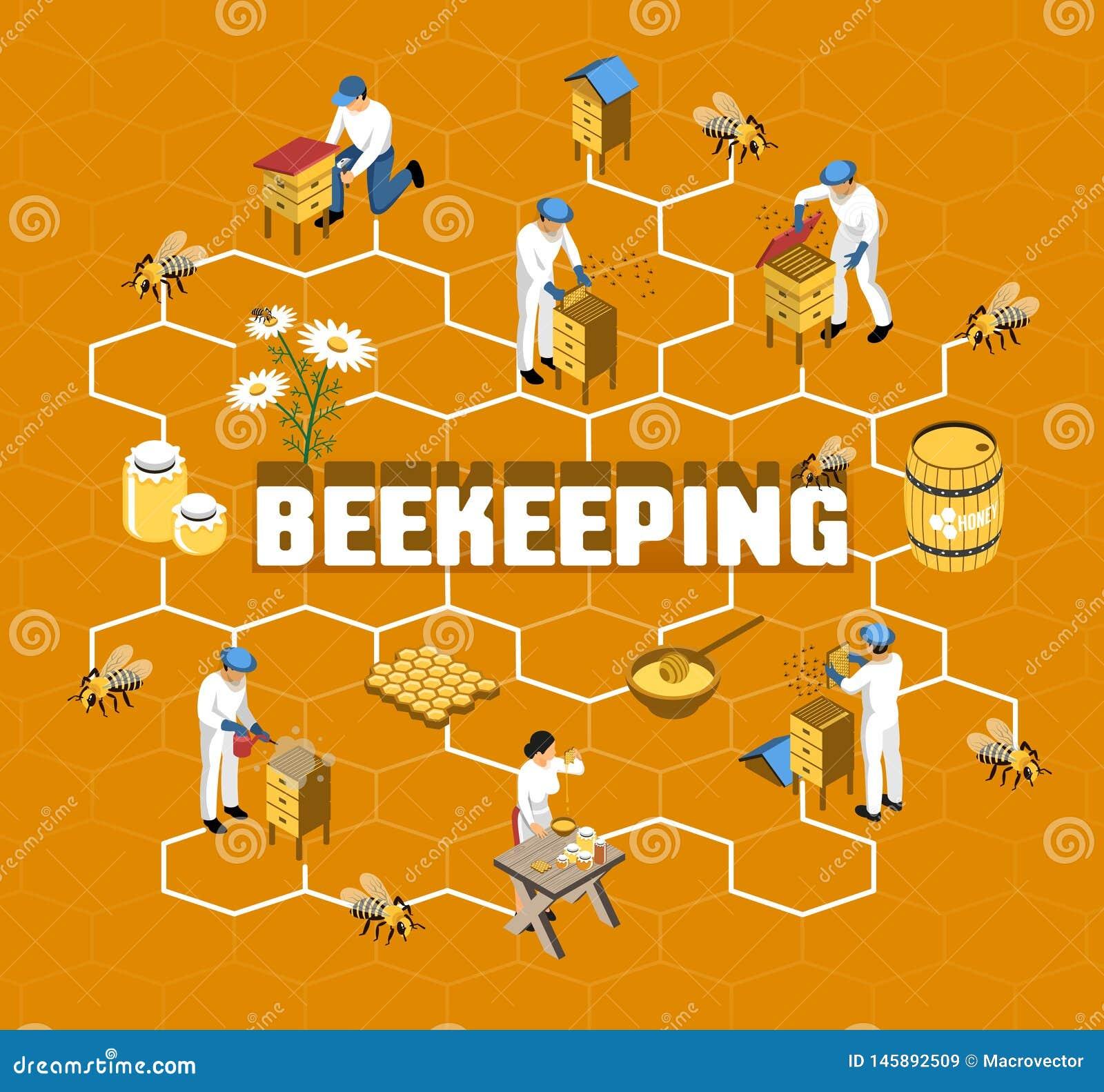 Beekeeping Isometric Flowchart