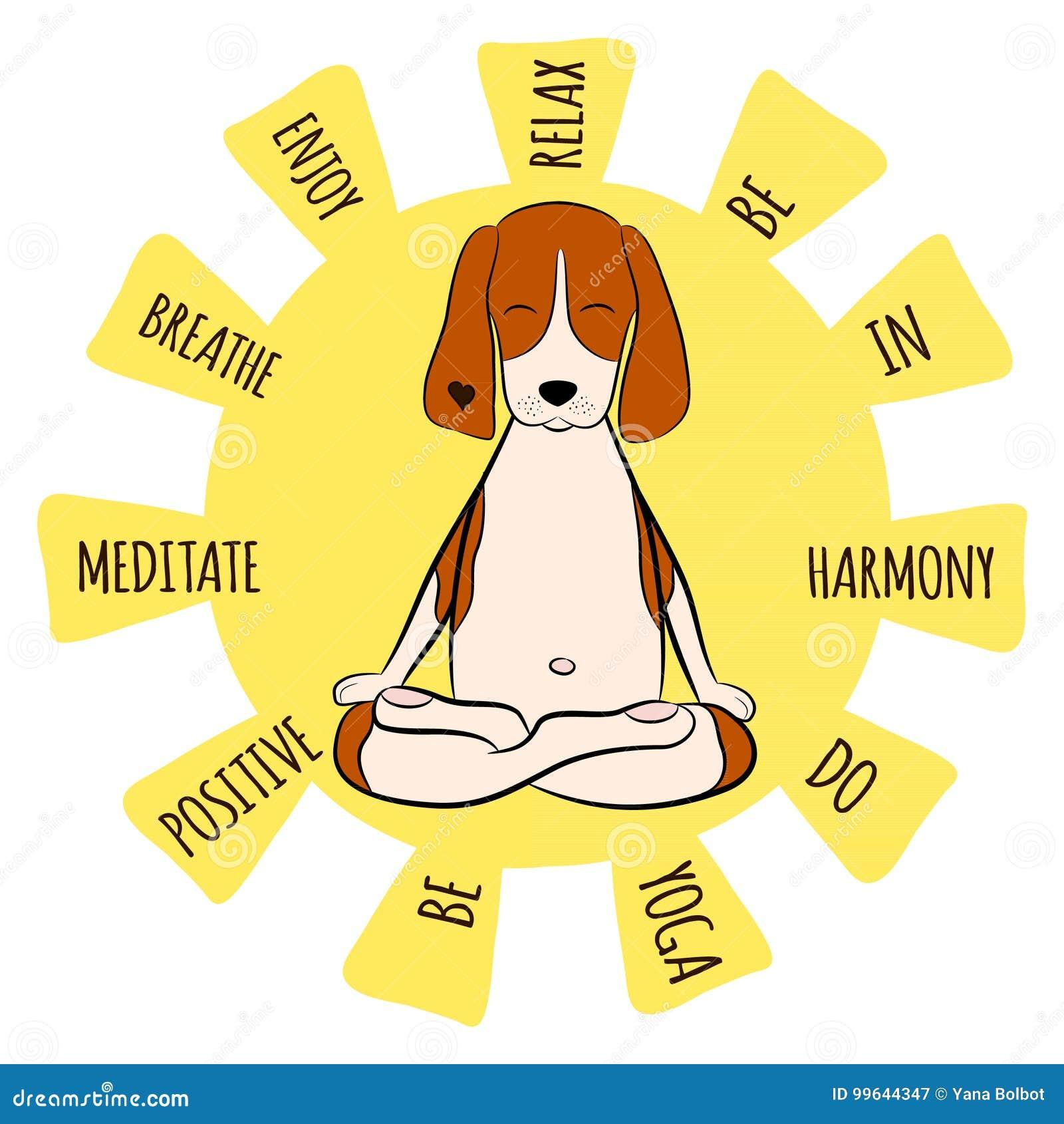 Beeld van een de brakzitting van de beeldverhaal grappige hond op lotusbloempositie van yoga
