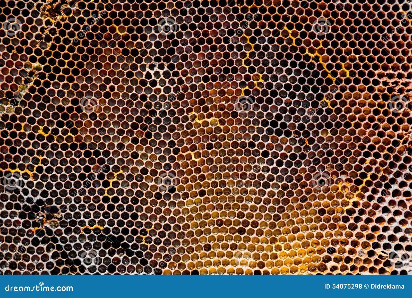 Beeld van een oude honingraat in close-up