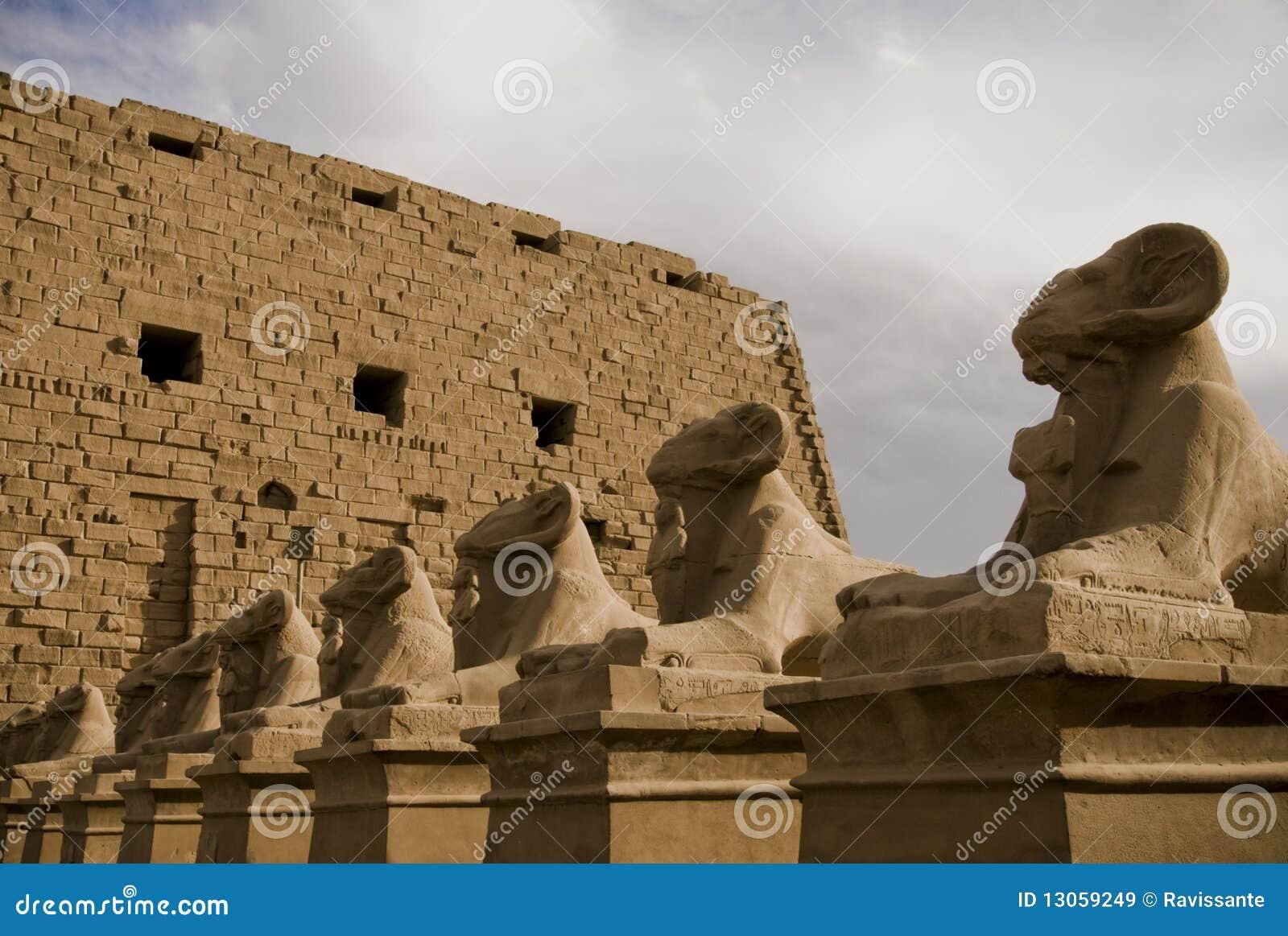Beeldhouwwerken van de Sfinx van de steen de ram geleide bij Tempel van Am