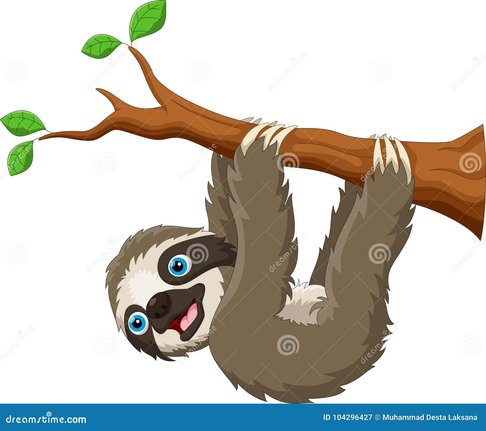Beeldverhaal het leuke die luiaard hangen op de boom op witte achtergrond wordt geïsoleerd