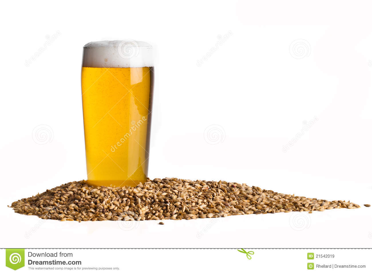beer with barley royalty free stock images image 21542019