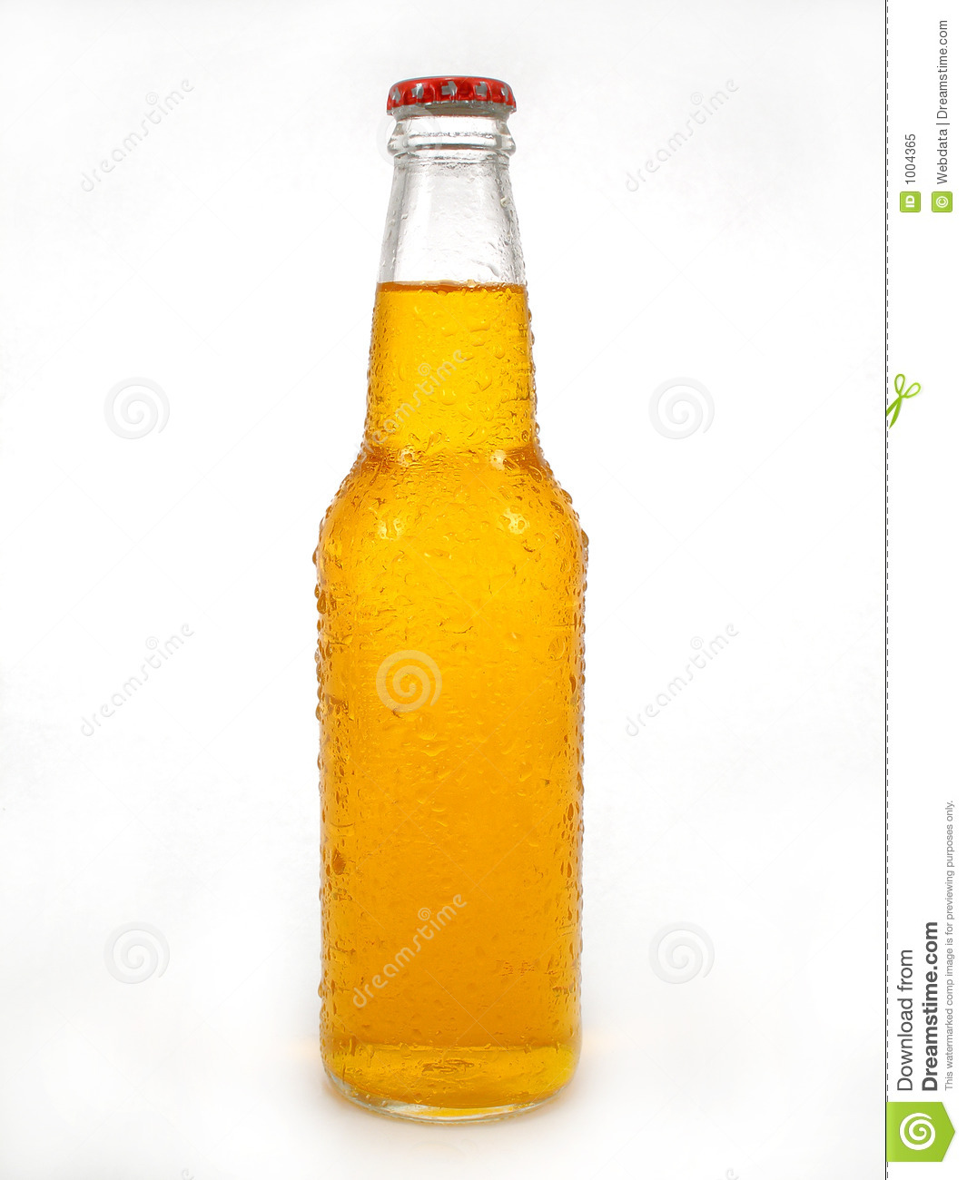 Beer Bottle Royalty Free Stock Photo - Image: 1004365