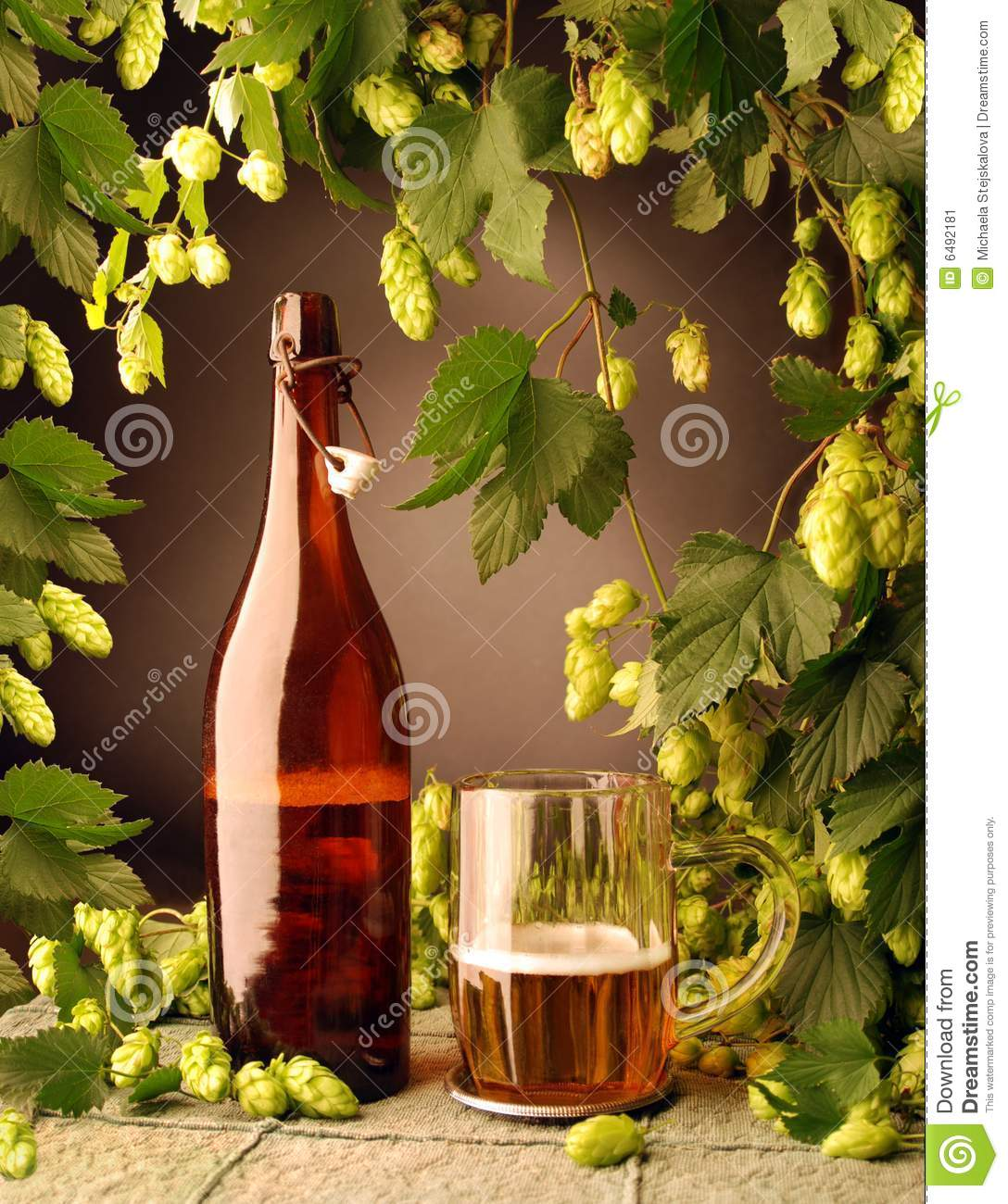 Hops For Decoration Beer Bottle And With Hops Stock Image Image 6492181