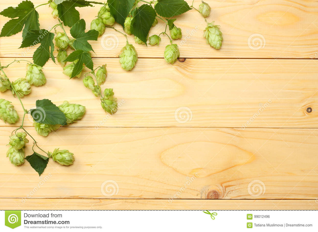 Beer brewing ingredients Hop on light wooden table. Beer brewery concept. Beer background. Top view with copy space