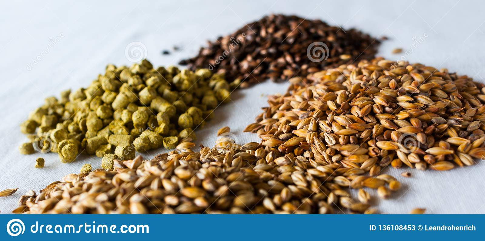 The beer components over a white background