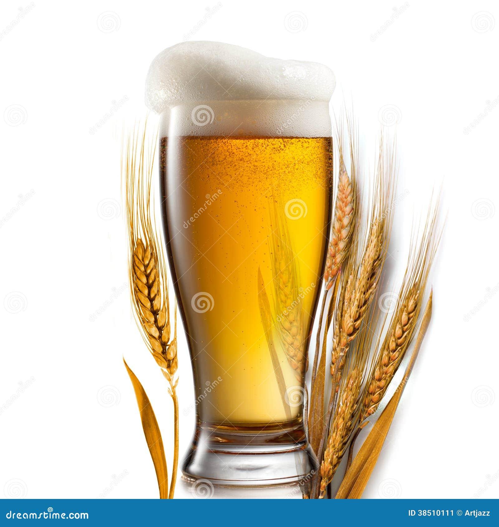 wheat business plan