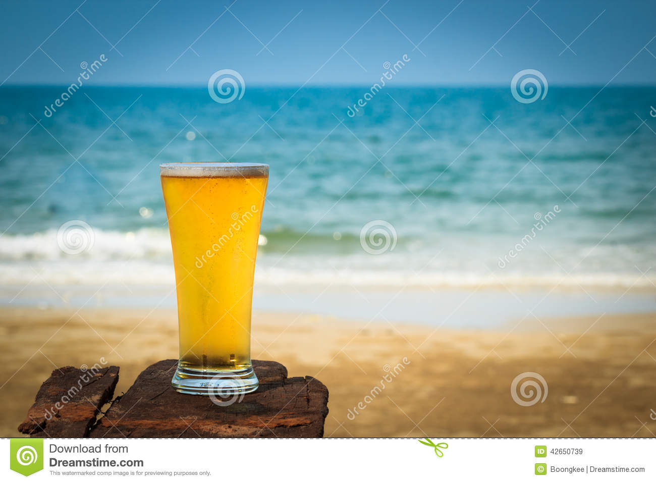Beer On Sand Beach Stock Photo Image 42650739